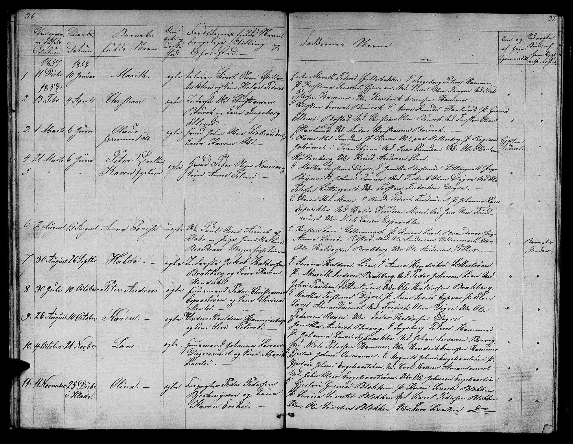 SAT, Ministerialprotokoller, klokkerbøker og fødselsregistre - Sør-Trøndelag, 608/L0339: Klokkerbok nr. 608C05, 1844-1863, s. 36-37