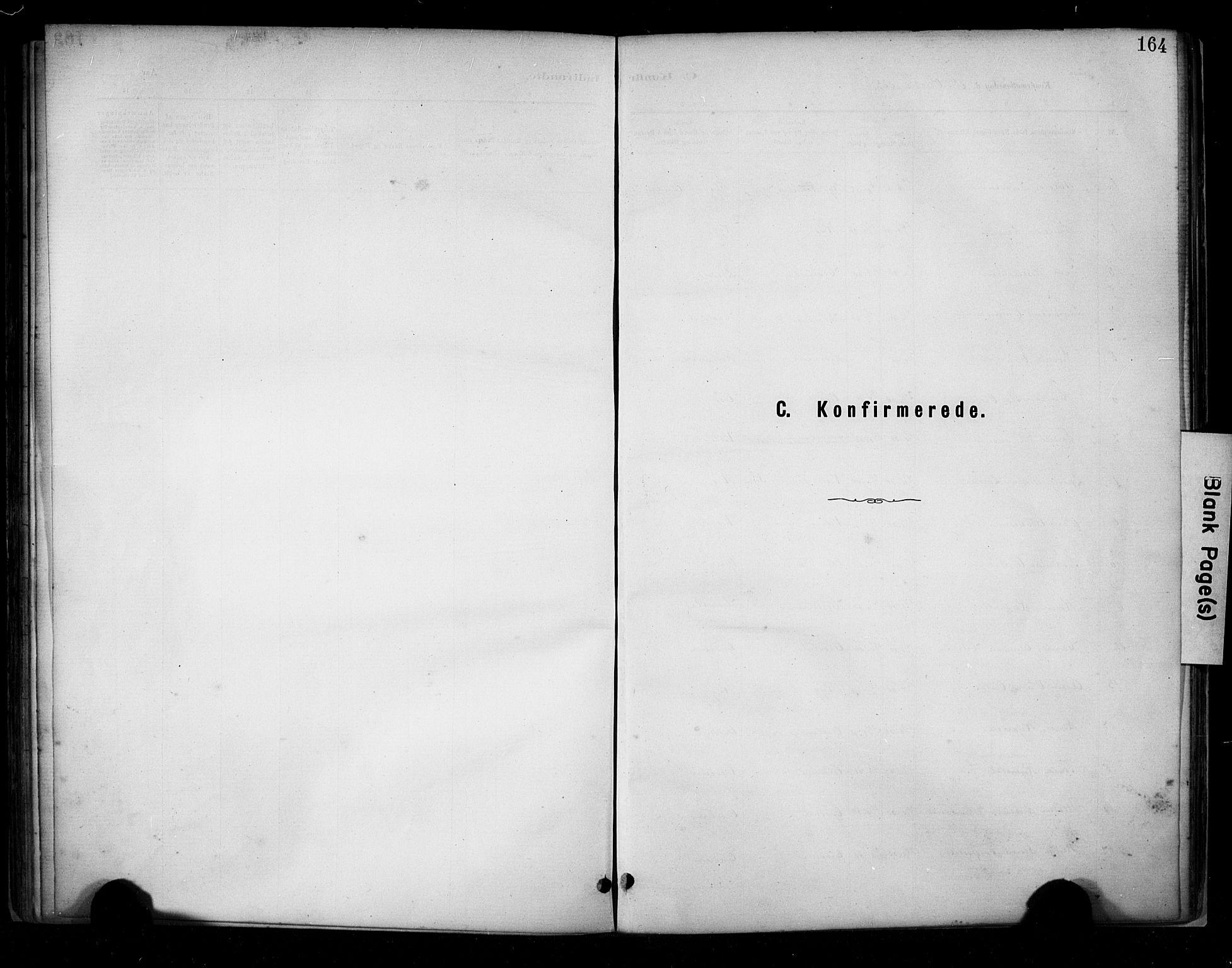 SAST, Hetland sokneprestkontor, 30/30BA/L0009: Ministerialbok nr. A 9, 1882-1918, s. 164