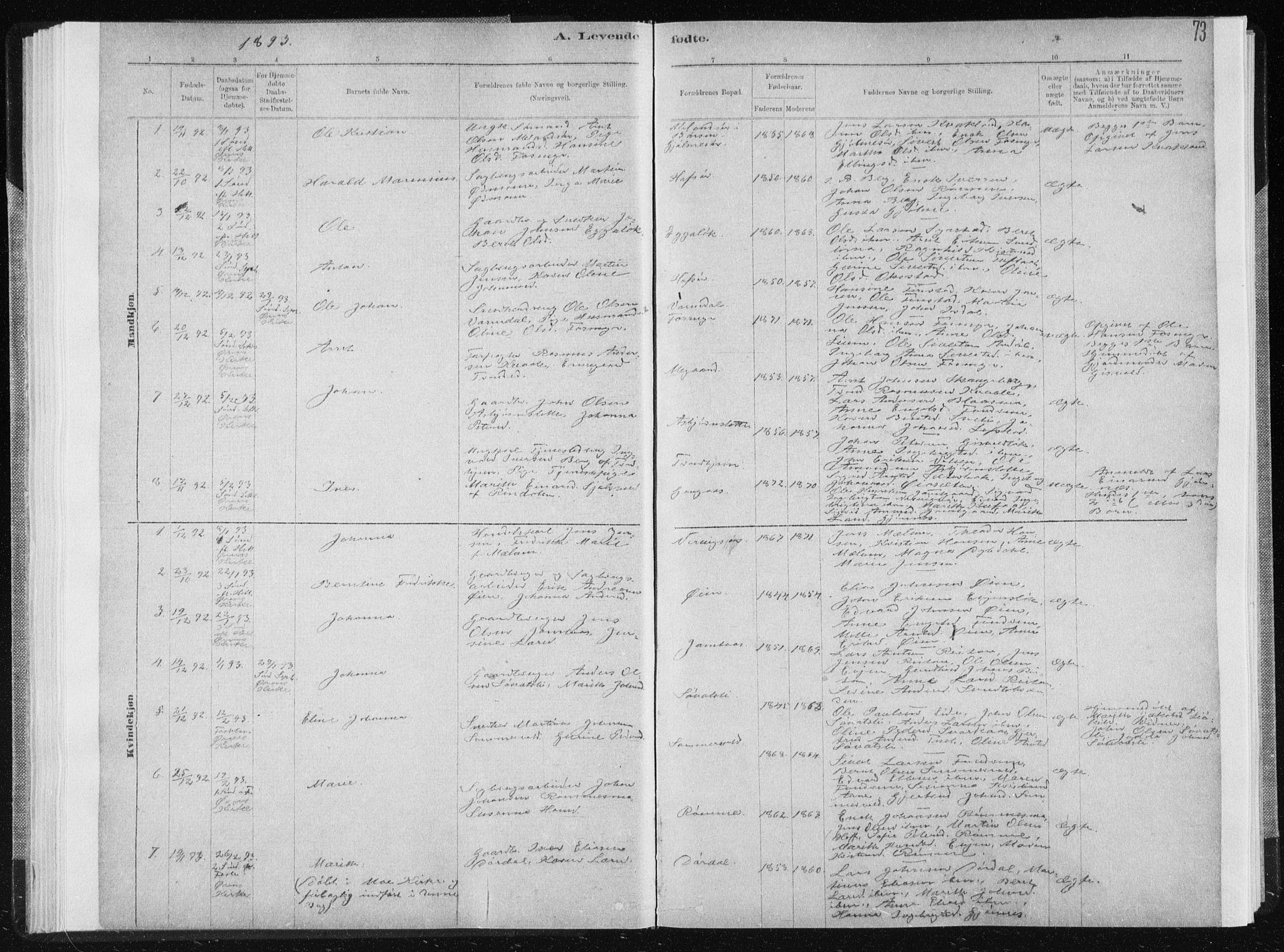 SAT, Ministerialprotokoller, klokkerbøker og fødselsregistre - Sør-Trøndelag, 668/L0818: Klokkerbok nr. 668C07, 1885-1898, s. 73