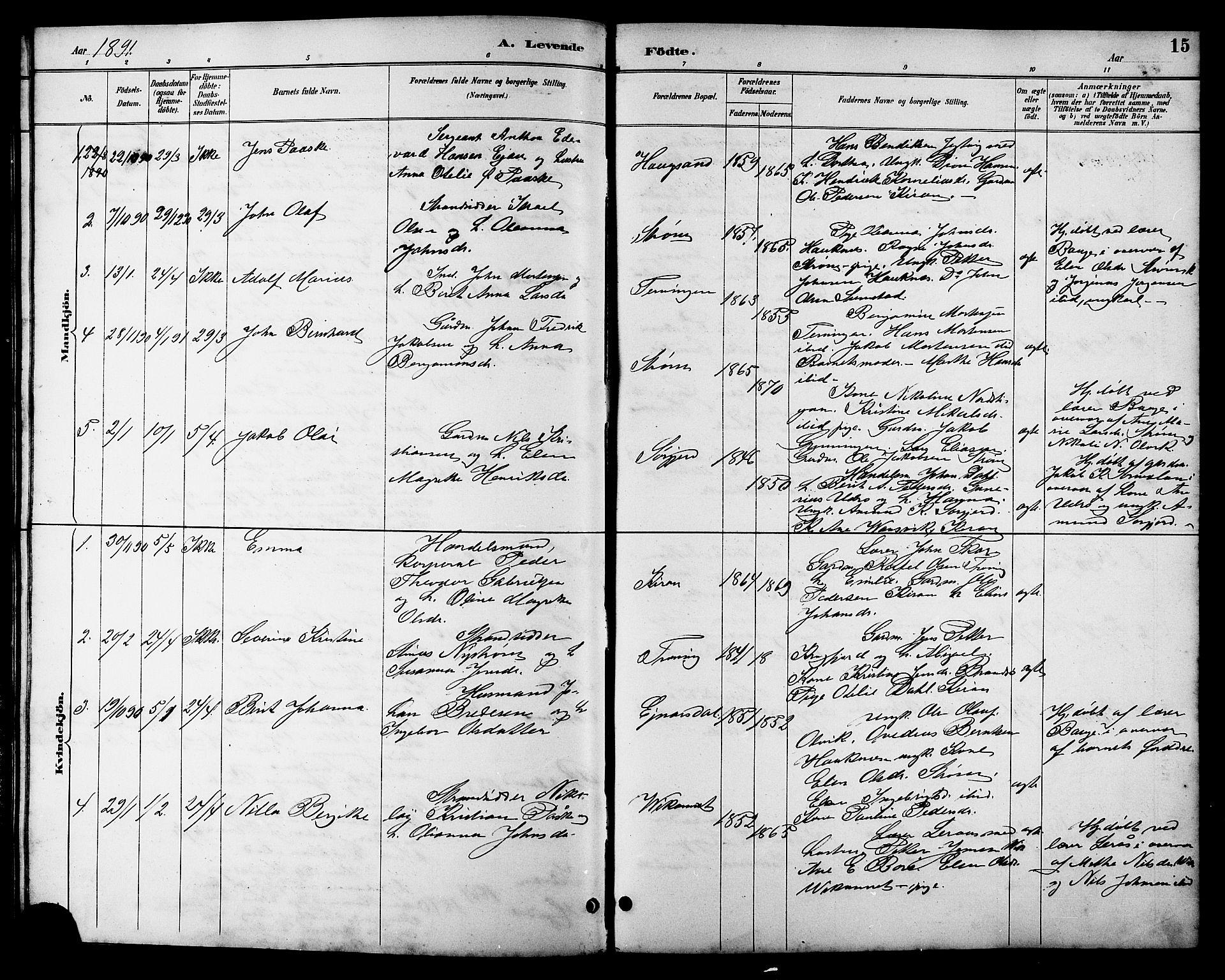 SAT, Ministerialprotokoller, klokkerbøker og fødselsregistre - Sør-Trøndelag, 657/L0716: Klokkerbok nr. 657C03, 1889-1904, s. 15