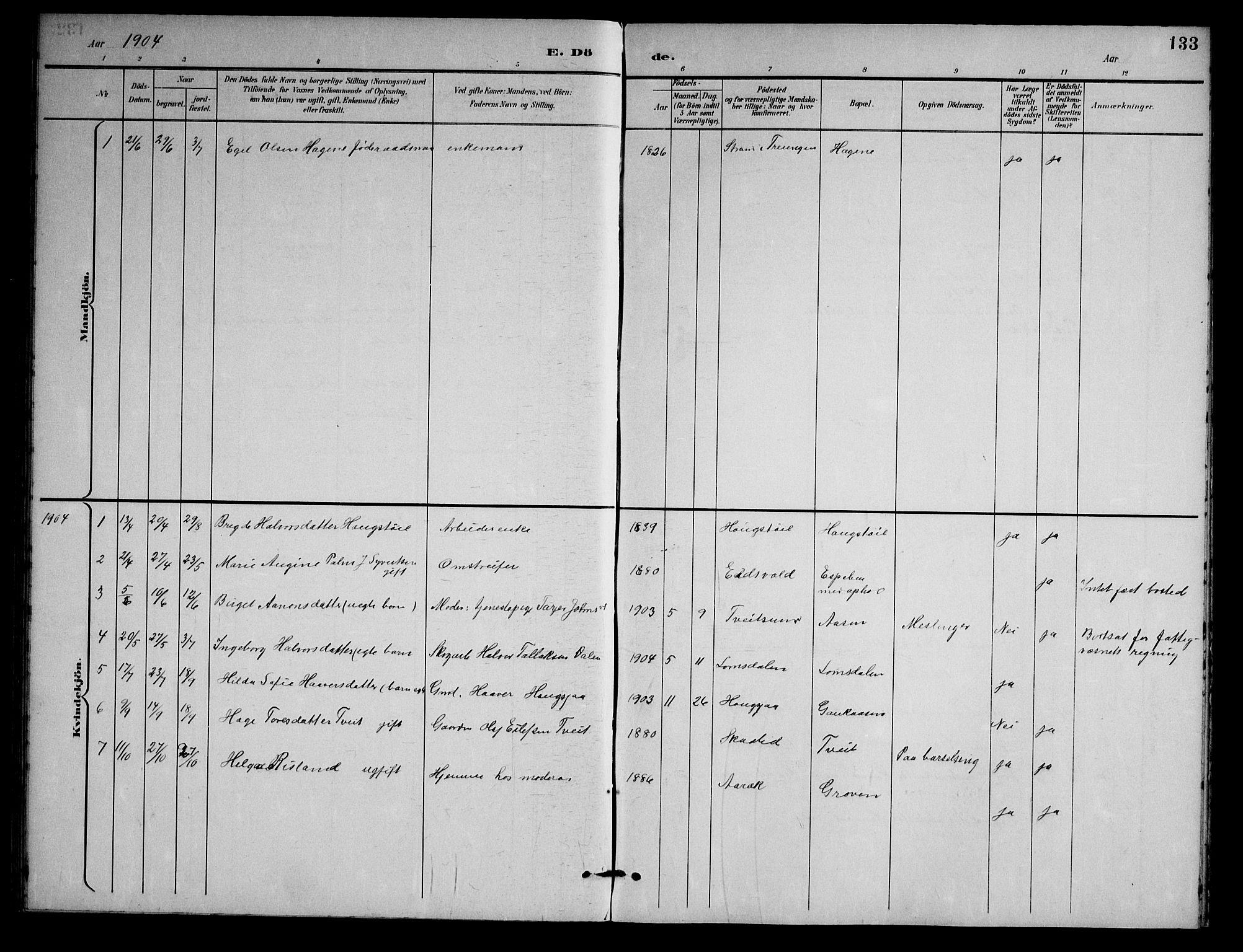 SAKO, Nissedal kirkebøker, G/Gb/L0003: Klokkerbok nr. II 3, 1893-1928, s. 133