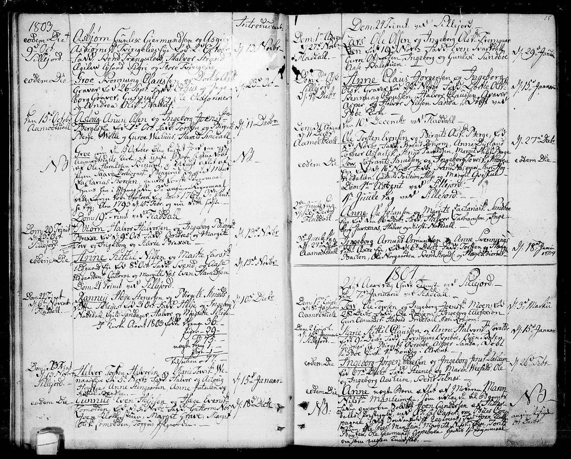SAKO, Seljord kirkebøker, F/Fa/L0009: Ministerialbok nr. I 9, 1801-1814, s. 15