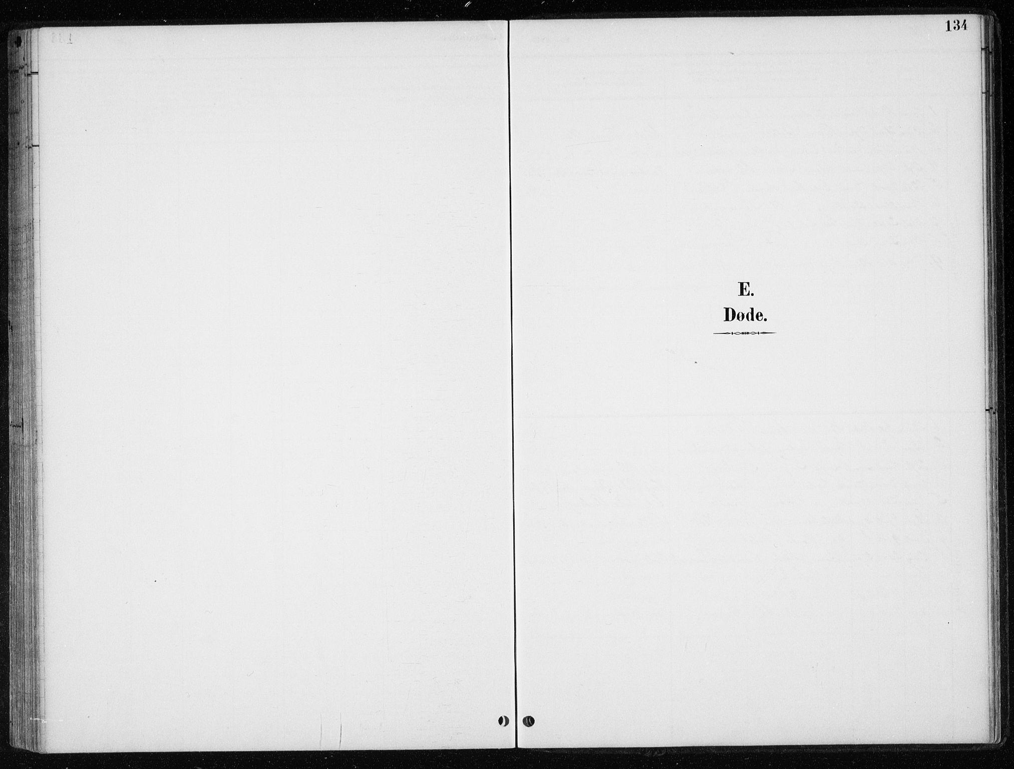 SAT, Ministerialprotokoller, klokkerbøker og fødselsregistre - Nord-Trøndelag, 710/L0096: Klokkerbok nr. 710C01, 1892-1925, s. 134