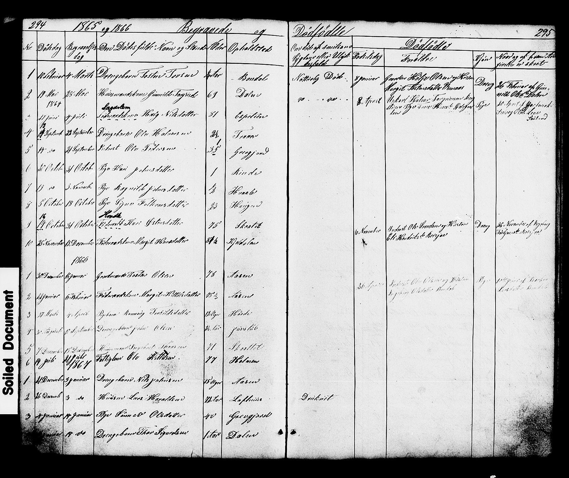 SAKO, Hjartdal kirkebøker, G/Gc/L0002: Klokkerbok nr. III 2, 1854-1890, s. 294-295