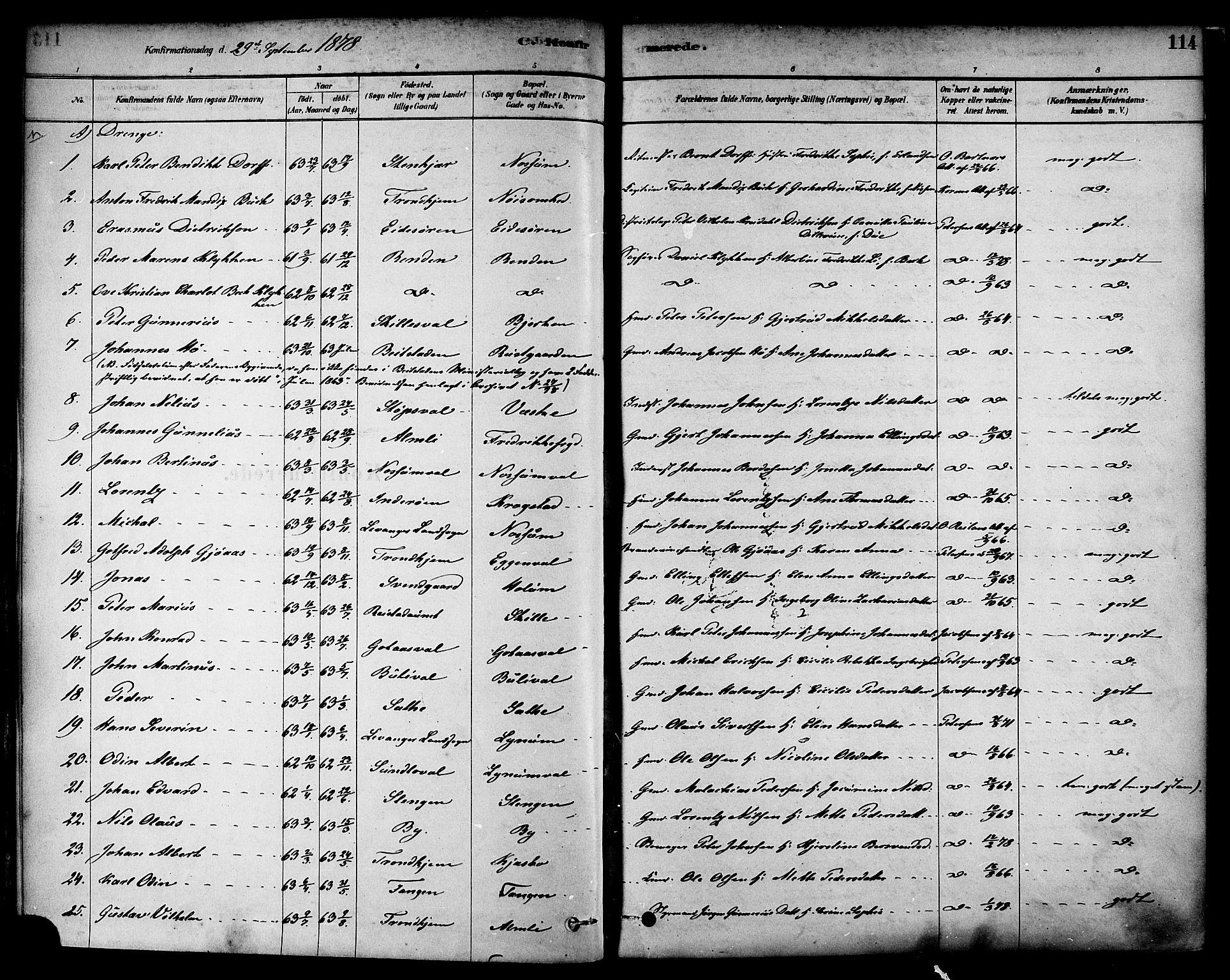 SAT, Ministerialprotokoller, klokkerbøker og fødselsregistre - Nord-Trøndelag, 717/L0159: Ministerialbok nr. 717A09, 1878-1898, s. 114