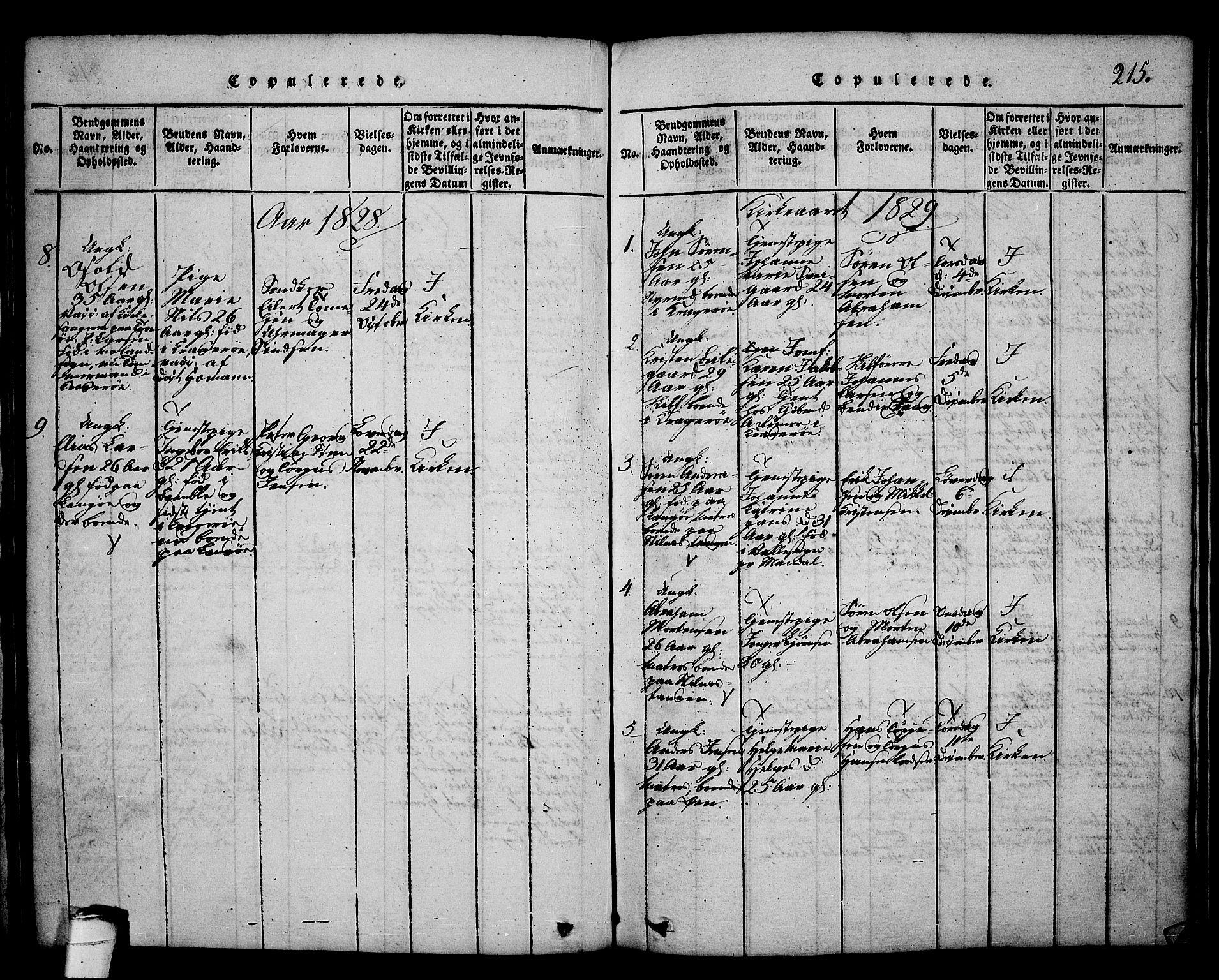 SAKO, Kragerø kirkebøker, G/Ga/L0002: Klokkerbok nr. 2, 1814-1831, s. 215