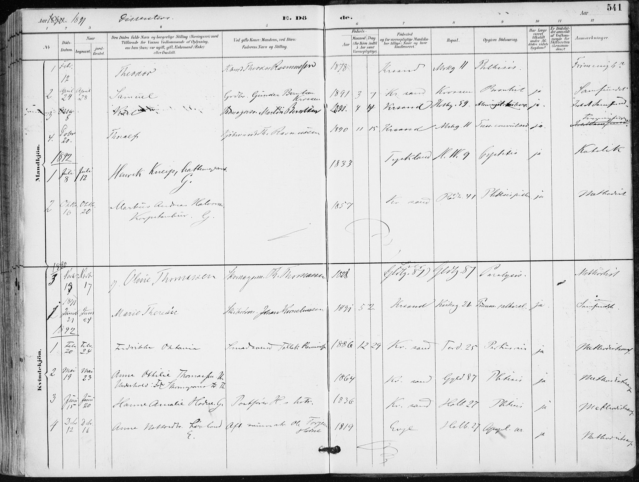SAK, Kristiansand domprosti, F/Fa/L0019: Ministerialbok nr. A 18, 1890-1897, s. 541