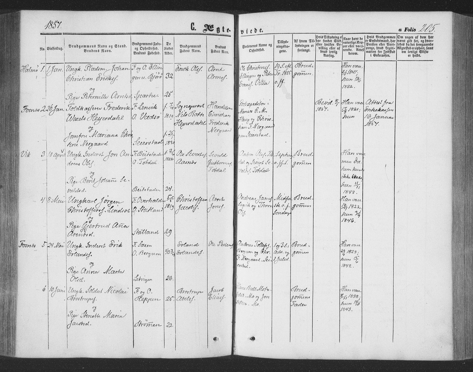 SAT, Ministerialprotokoller, klokkerbøker og fødselsregistre - Nord-Trøndelag, 773/L0615: Ministerialbok nr. 773A06, 1857-1870, s. 205