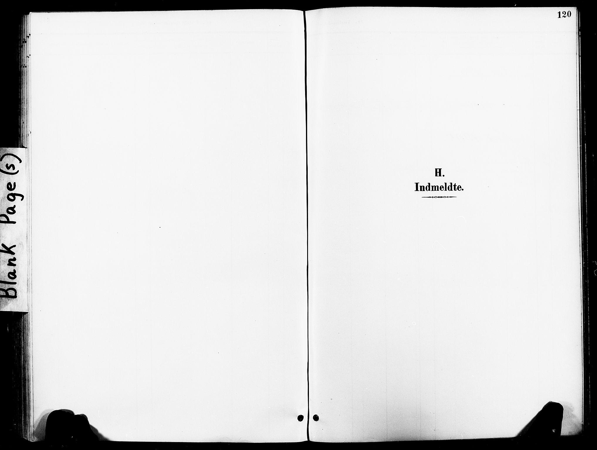 SAT, Ministerialprotokoller, klokkerbøker og fødselsregistre - Nord-Trøndelag, 740/L0379: Ministerialbok nr. 740A02, 1895-1907, s. 120