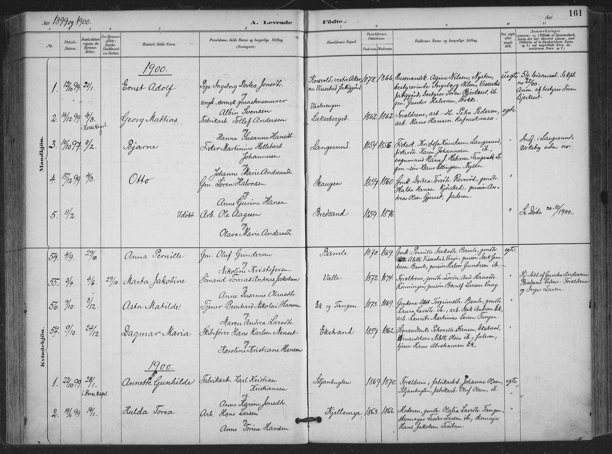 SAKO, Bamble kirkebøker, F/Fa/L0008: Ministerialbok nr. I 8, 1888-1900, s. 161