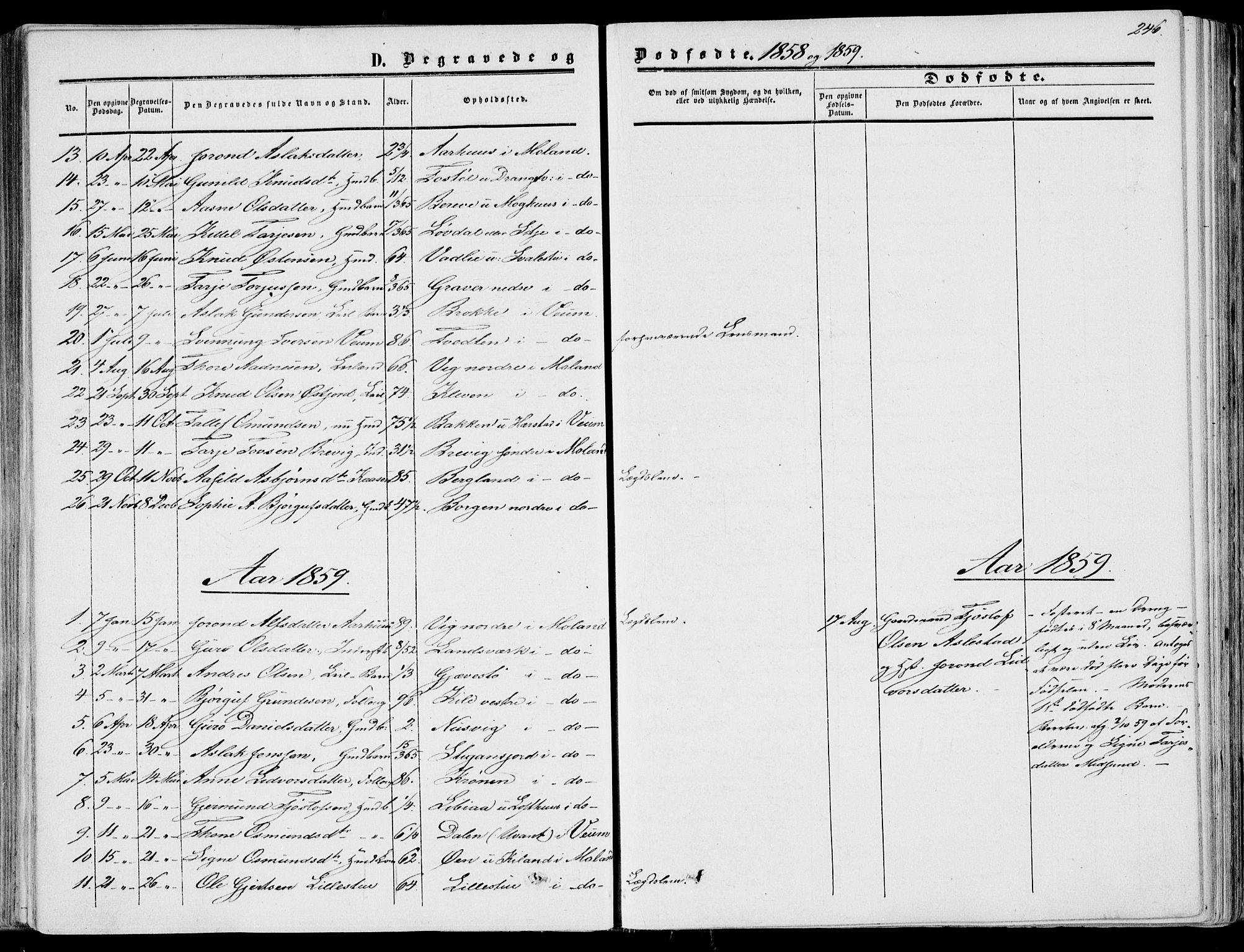 SAKO, Fyresdal kirkebøker, F/Fa/L0005: Ministerialbok nr. I 5, 1855-1871, s. 246