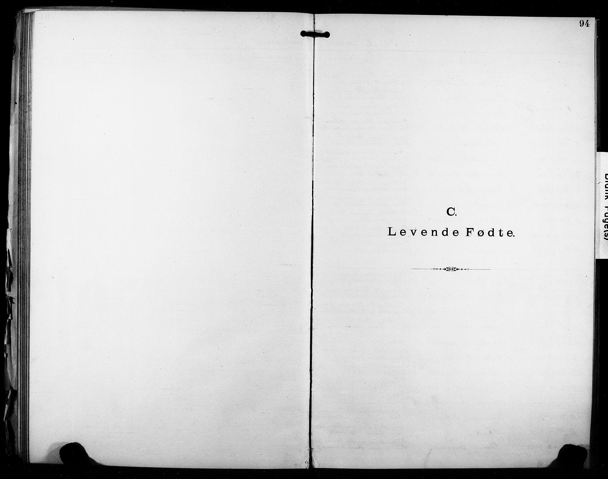 SAO, Kristi menighet Fredrikstad , A/L0001: Dissenterprotokoll nr. 1, 1893-1914, s. 94