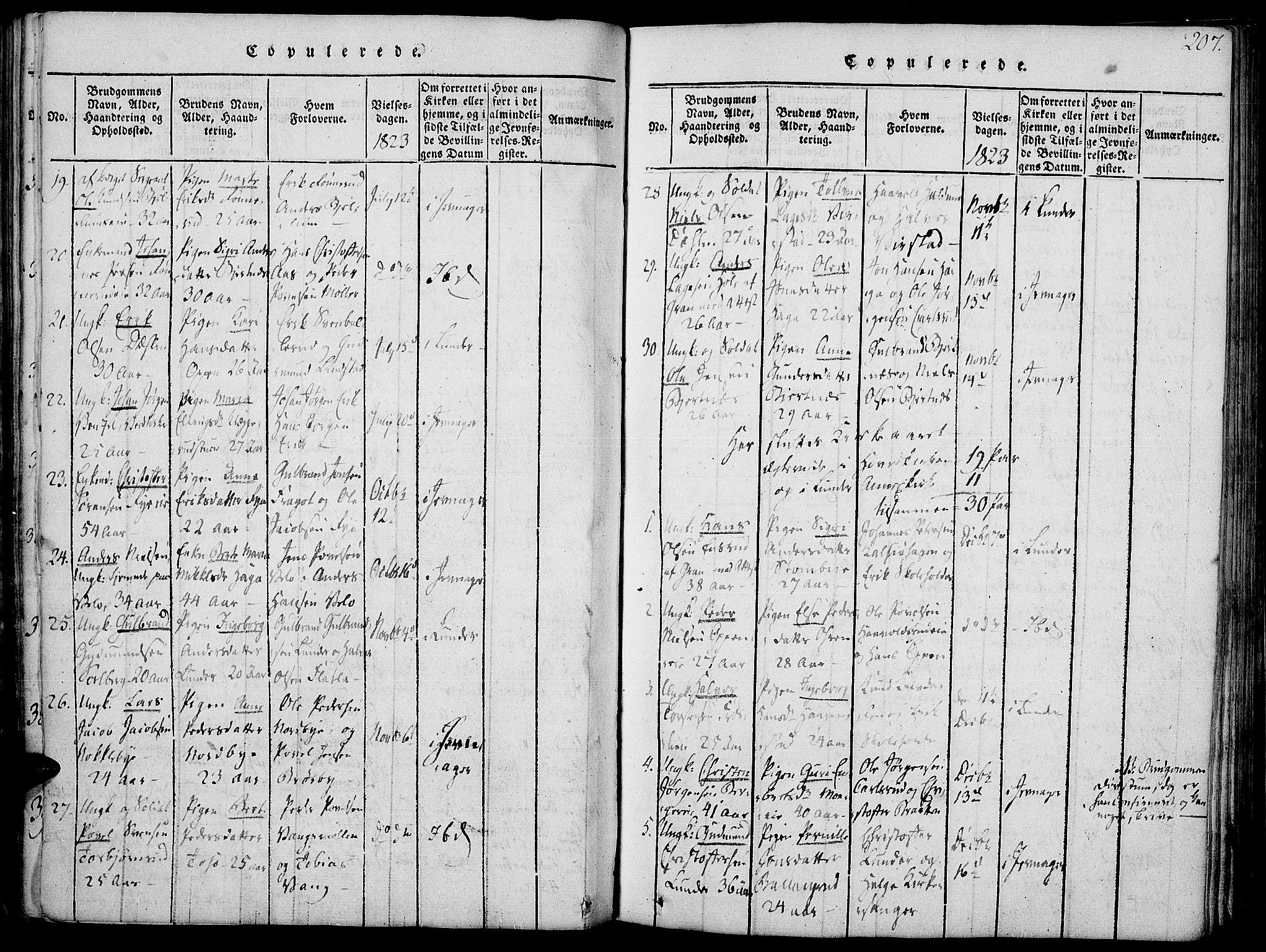 SAH, Jevnaker prestekontor, Ministerialbok nr. 5, 1815-1837, s. 207