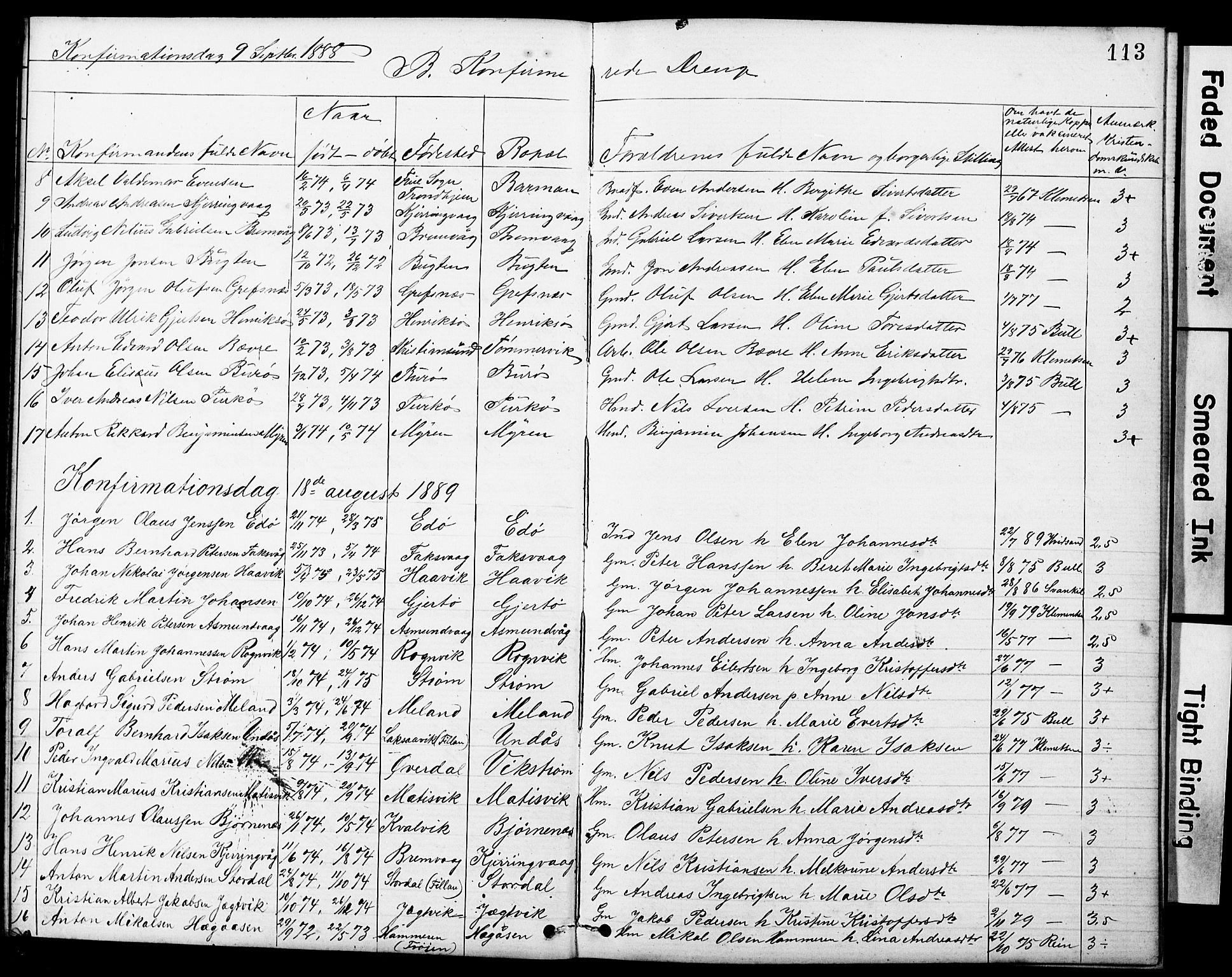 SAT, Ministerialprotokoller, klokkerbøker og fødselsregistre - Sør-Trøndelag, 634/L0541: Klokkerbok nr. 634C03, 1874-1891, s. 113