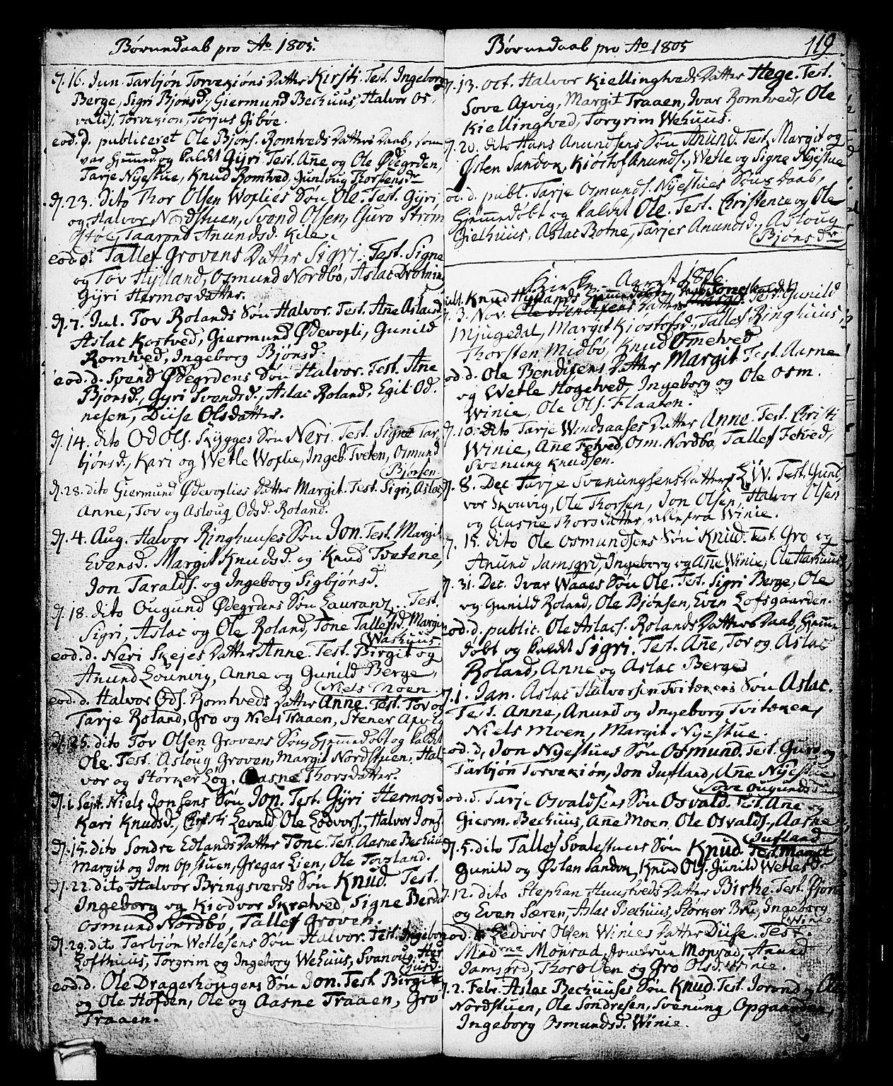 SAKO, Vinje kirkebøker, F/Fa/L0002: Ministerialbok nr. I 2, 1767-1814, s. 119