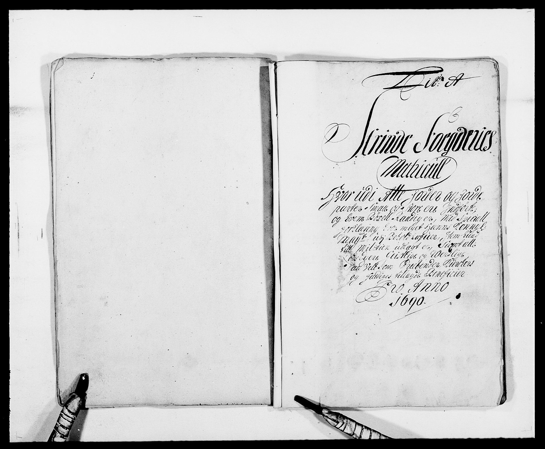 RA, Rentekammeret inntil 1814, Reviderte regnskaper, Fogderegnskap, R61/L4102: Fogderegnskap Strinda og Selbu, 1689-1690, s. 136