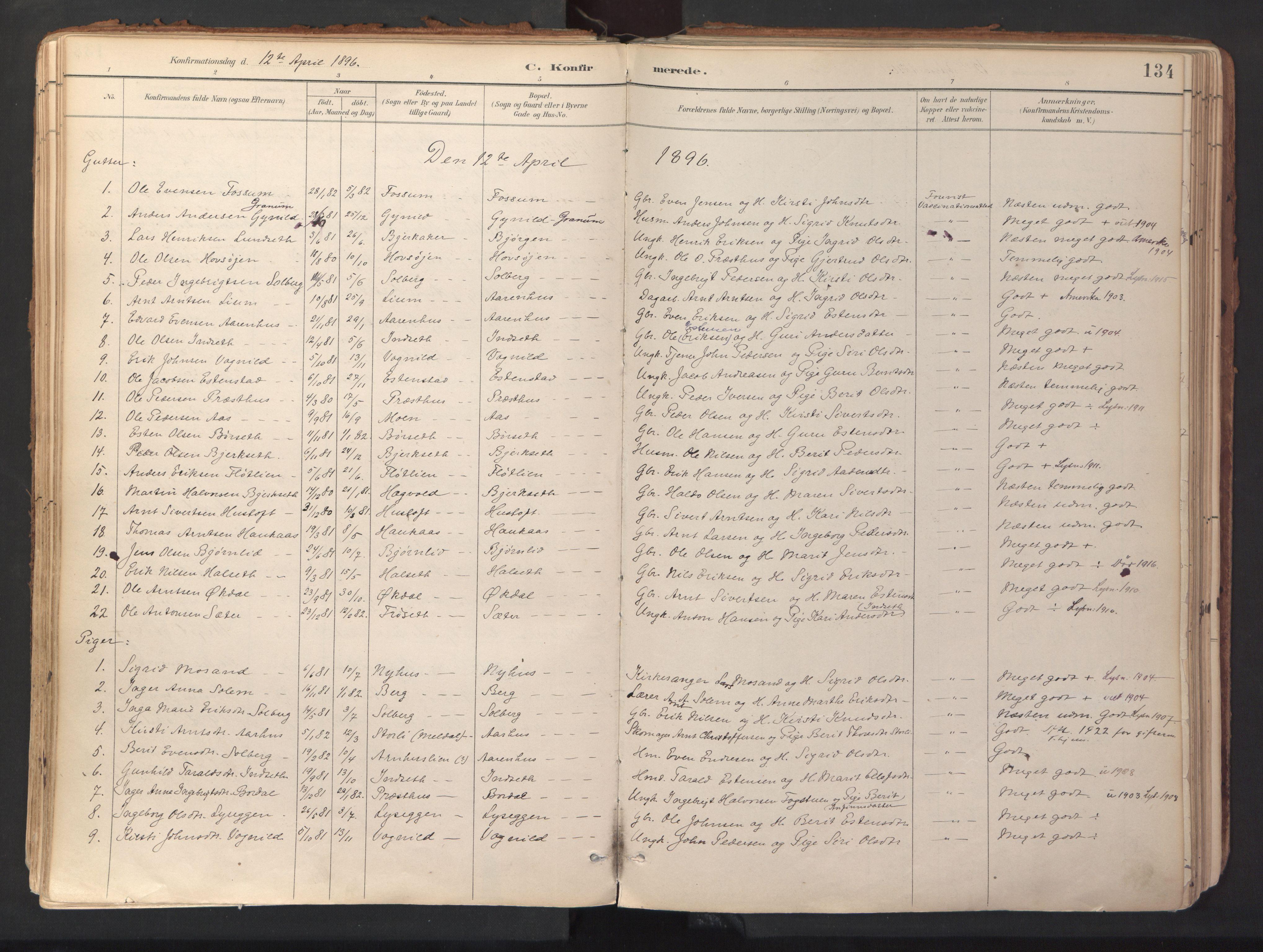 SAT, Ministerialprotokoller, klokkerbøker og fødselsregistre - Sør-Trøndelag, 689/L1041: Ministerialbok nr. 689A06, 1891-1923, s. 134