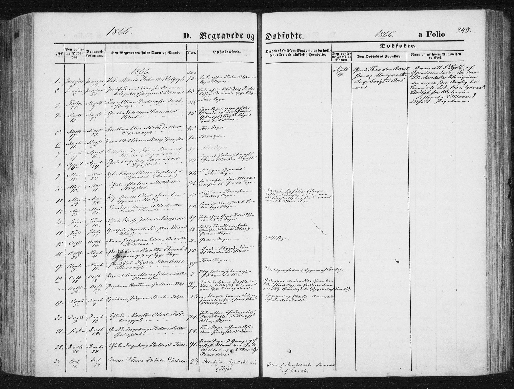 SAT, Ministerialprotokoller, klokkerbøker og fødselsregistre - Nord-Trøndelag, 746/L0447: Ministerialbok nr. 746A06, 1860-1877, s. 249