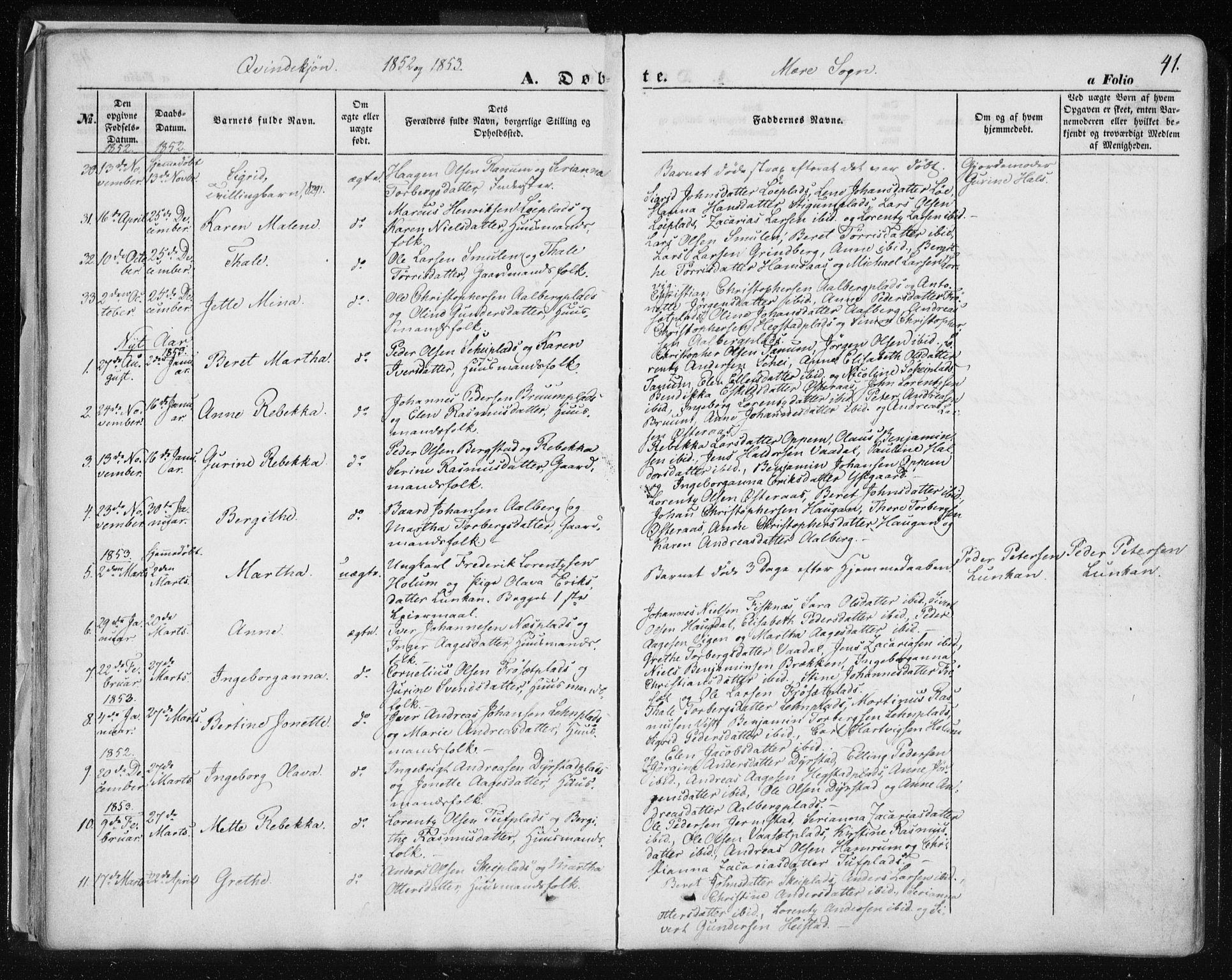 SAT, Ministerialprotokoller, klokkerbøker og fødselsregistre - Nord-Trøndelag, 735/L0342: Ministerialbok nr. 735A07 /1, 1849-1862, s. 41