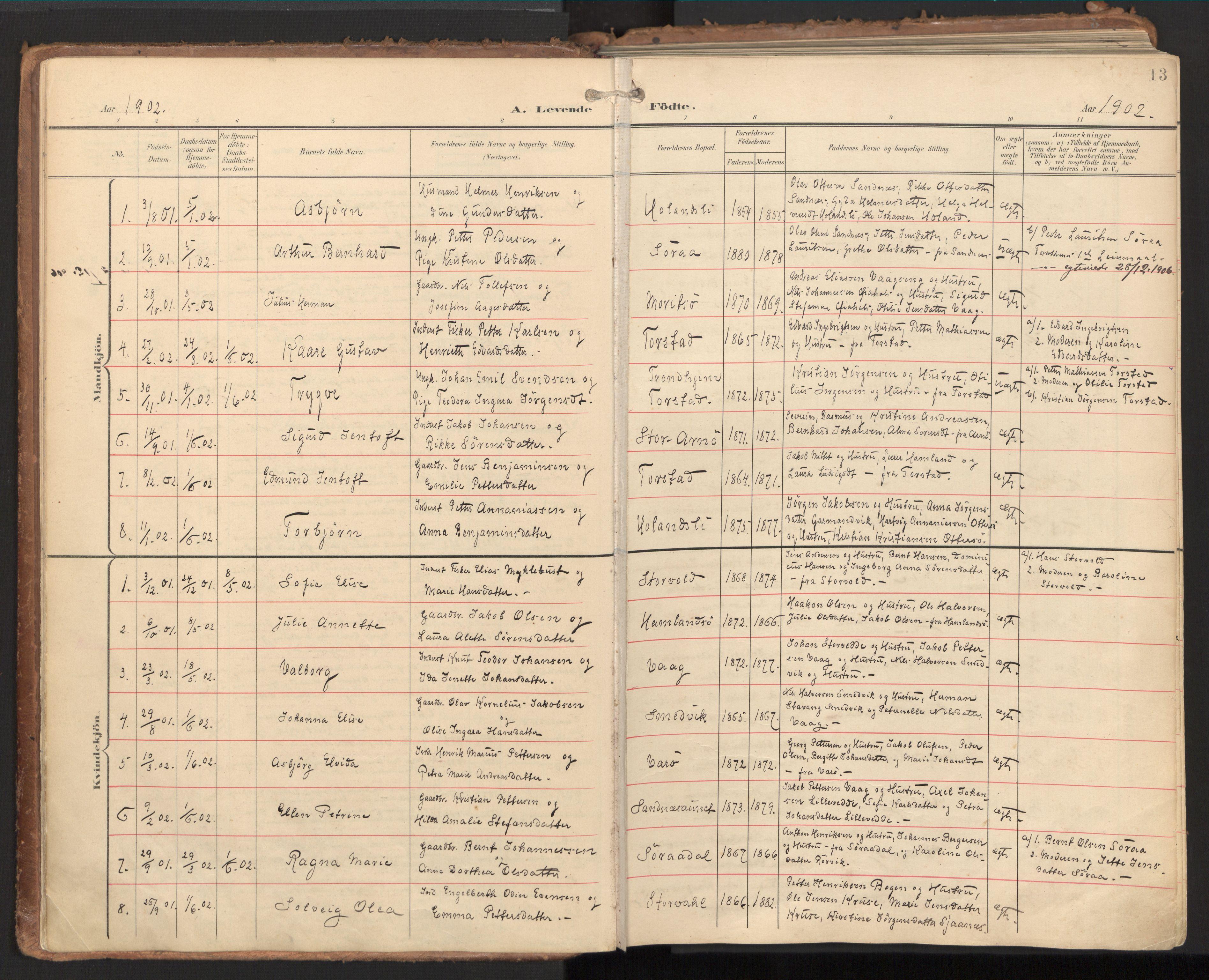SAT, Ministerialprotokoller, klokkerbøker og fødselsregistre - Nord-Trøndelag, 784/L0677: Ministerialbok nr. 784A12, 1900-1920, s. 13