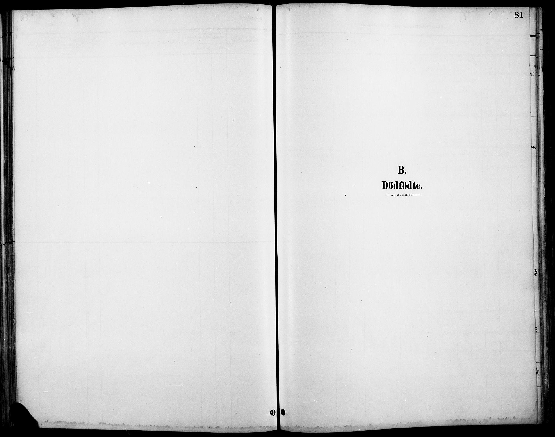 SAH, Østre Gausdal prestekontor, Ministerialbok nr. 2, 1887-1897, s. 81