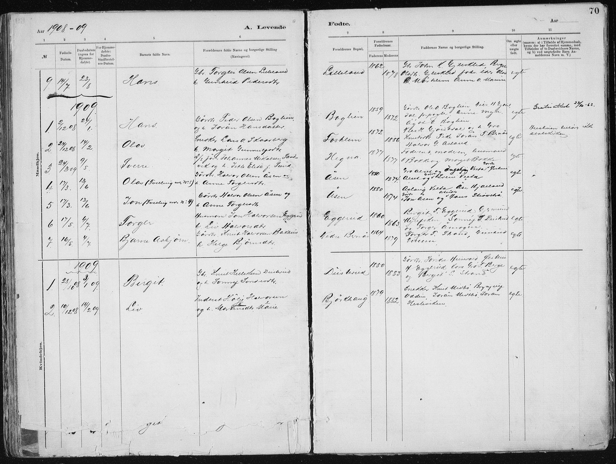 SAKO, Tinn kirkebøker, F/Fa/L0007: Ministerialbok nr. I 7, 1878-1922, s. 70
