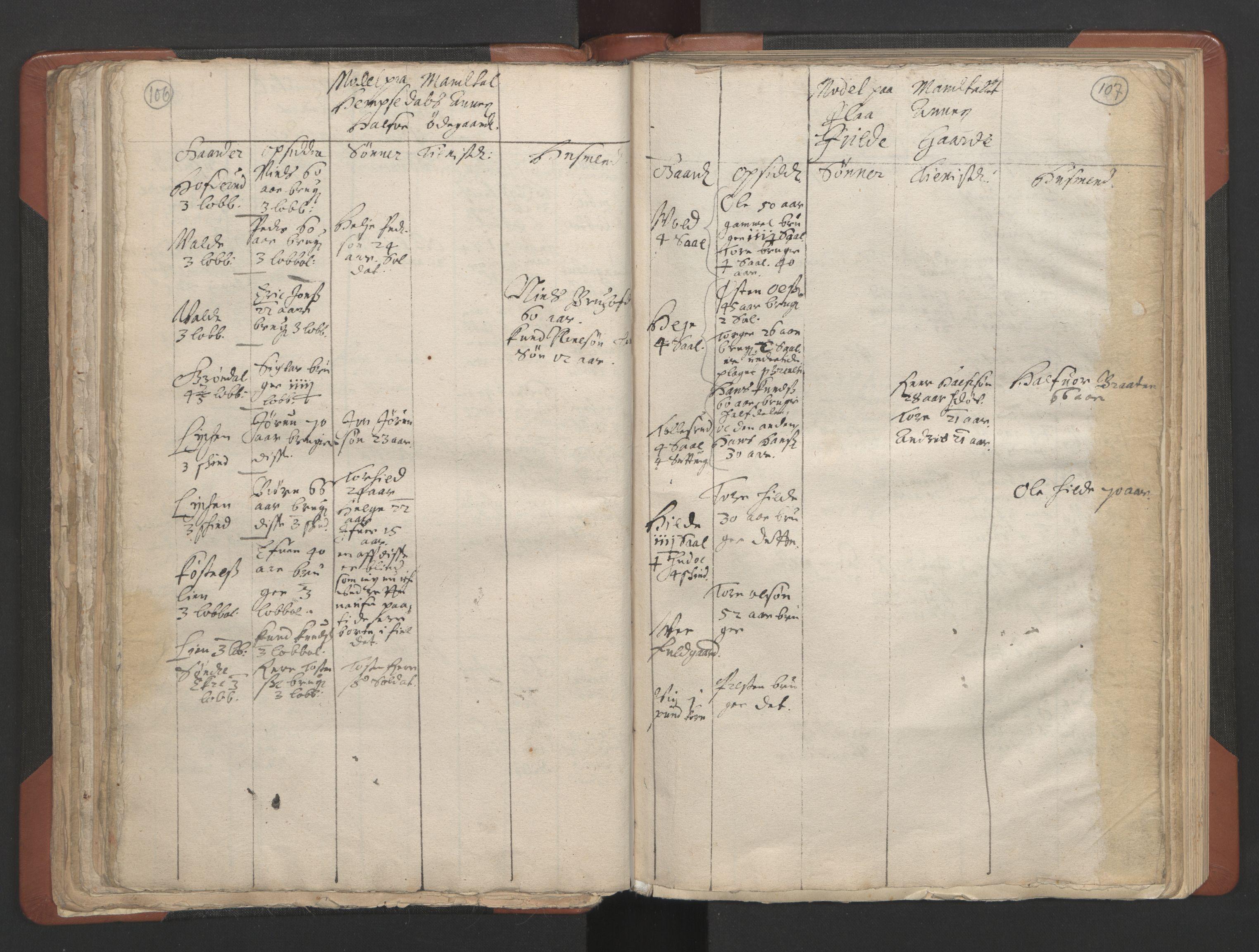 RA, Sogneprestenes manntall 1664-1666, nr. 8: Valdres prosti, 1664-1666, s. 106-107