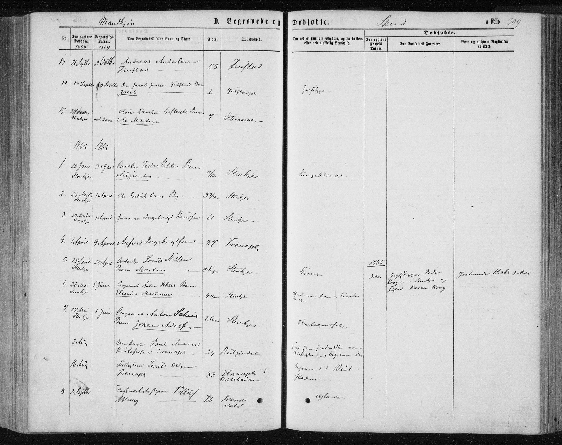SAT, Ministerialprotokoller, klokkerbøker og fødselsregistre - Nord-Trøndelag, 735/L0345: Ministerialbok nr. 735A08 /2, 1863-1872, s. 309