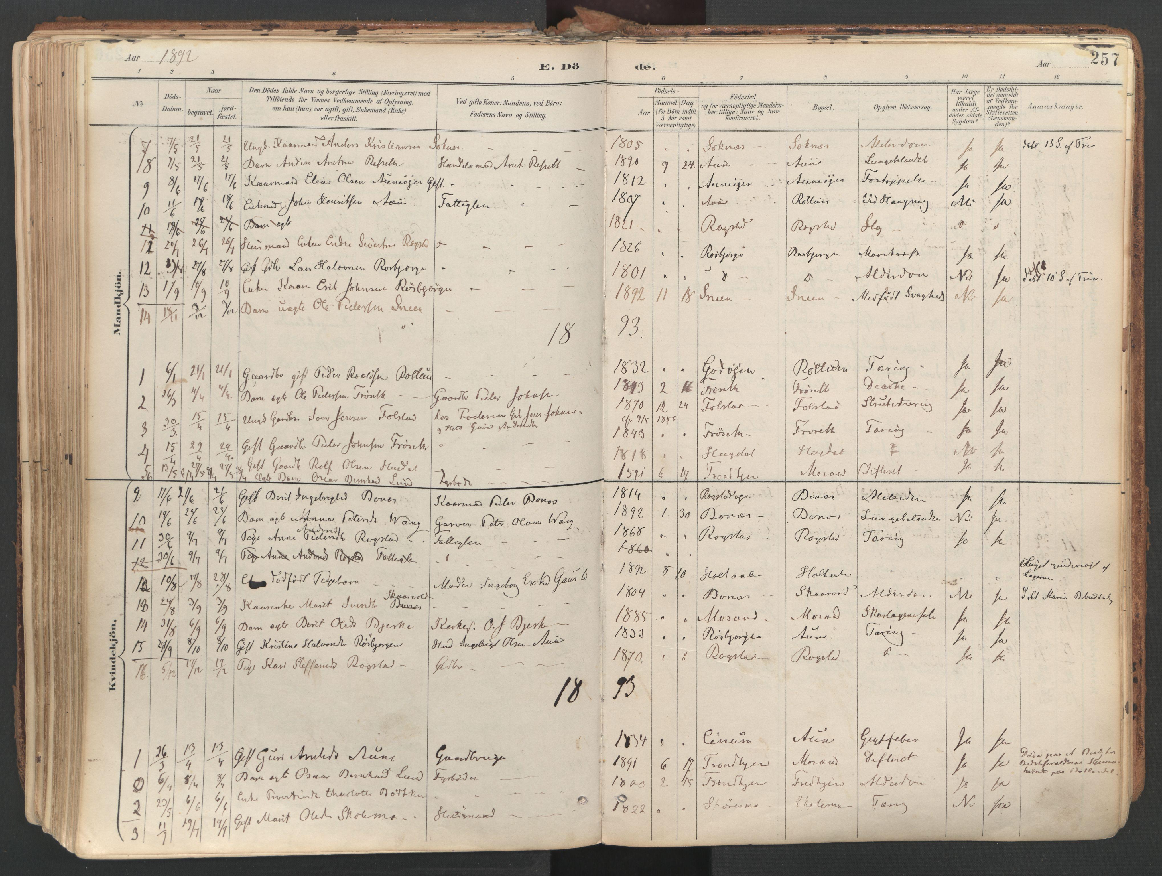 SAT, Ministerialprotokoller, klokkerbøker og fødselsregistre - Sør-Trøndelag, 687/L1004: Ministerialbok nr. 687A10, 1891-1923, s. 257