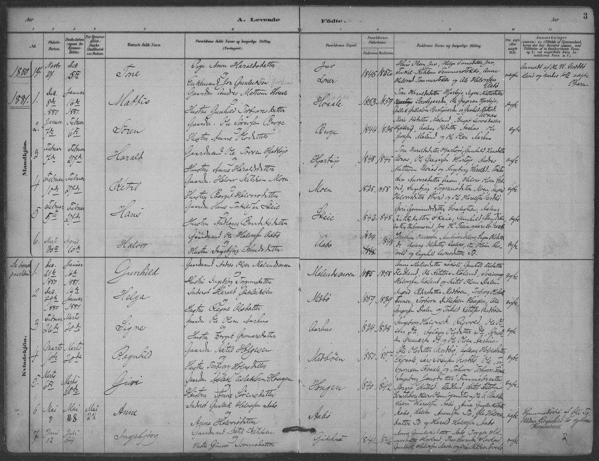SAKO, Hjartdal kirkebøker, F/Fa/L0010: Ministerialbok nr. I 10, 1880-1929, s. 3