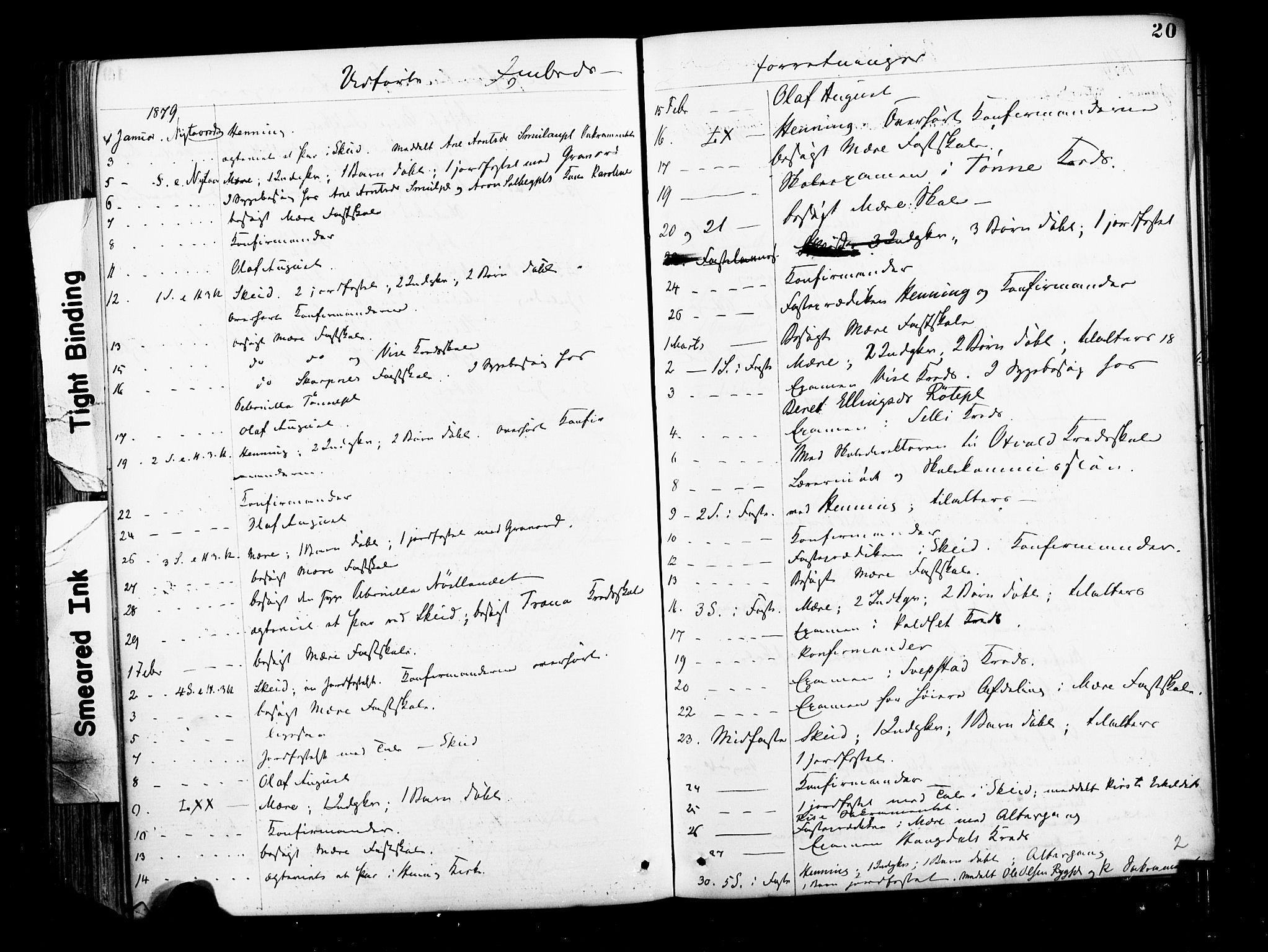 SAT, Ministerialprotokoller, klokkerbøker og fødselsregistre - Nord-Trøndelag, 735/L0348: Ministerialbok nr. 735A09 /1, 1873-1883, s. 20