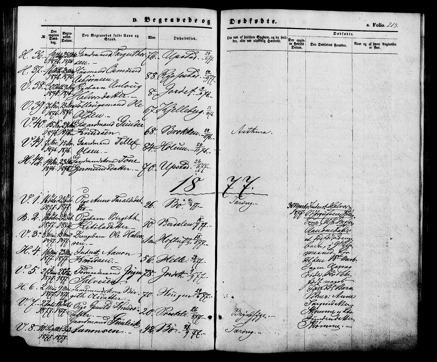 SAK, Valle sokneprestkontor, F/Fa/Fac/L0008: Ministerialbok nr. A 8, 1868-1882, s. 218
