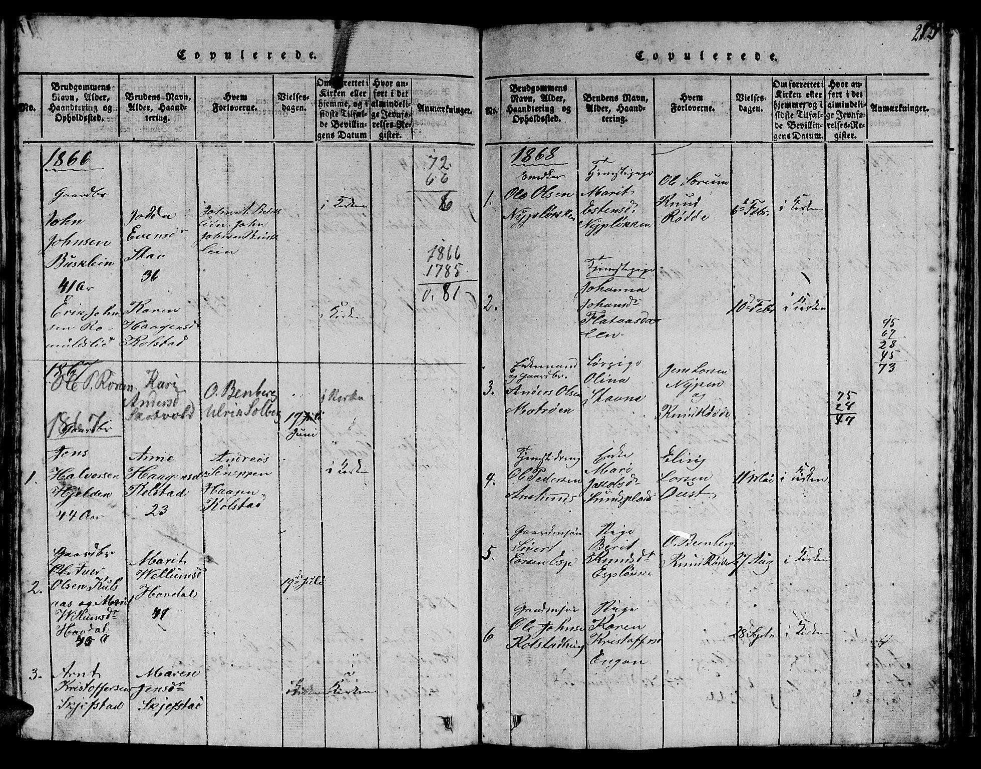 SAT, Ministerialprotokoller, klokkerbøker og fødselsregistre - Sør-Trøndelag, 613/L0393: Klokkerbok nr. 613C01, 1816-1886, s. 213