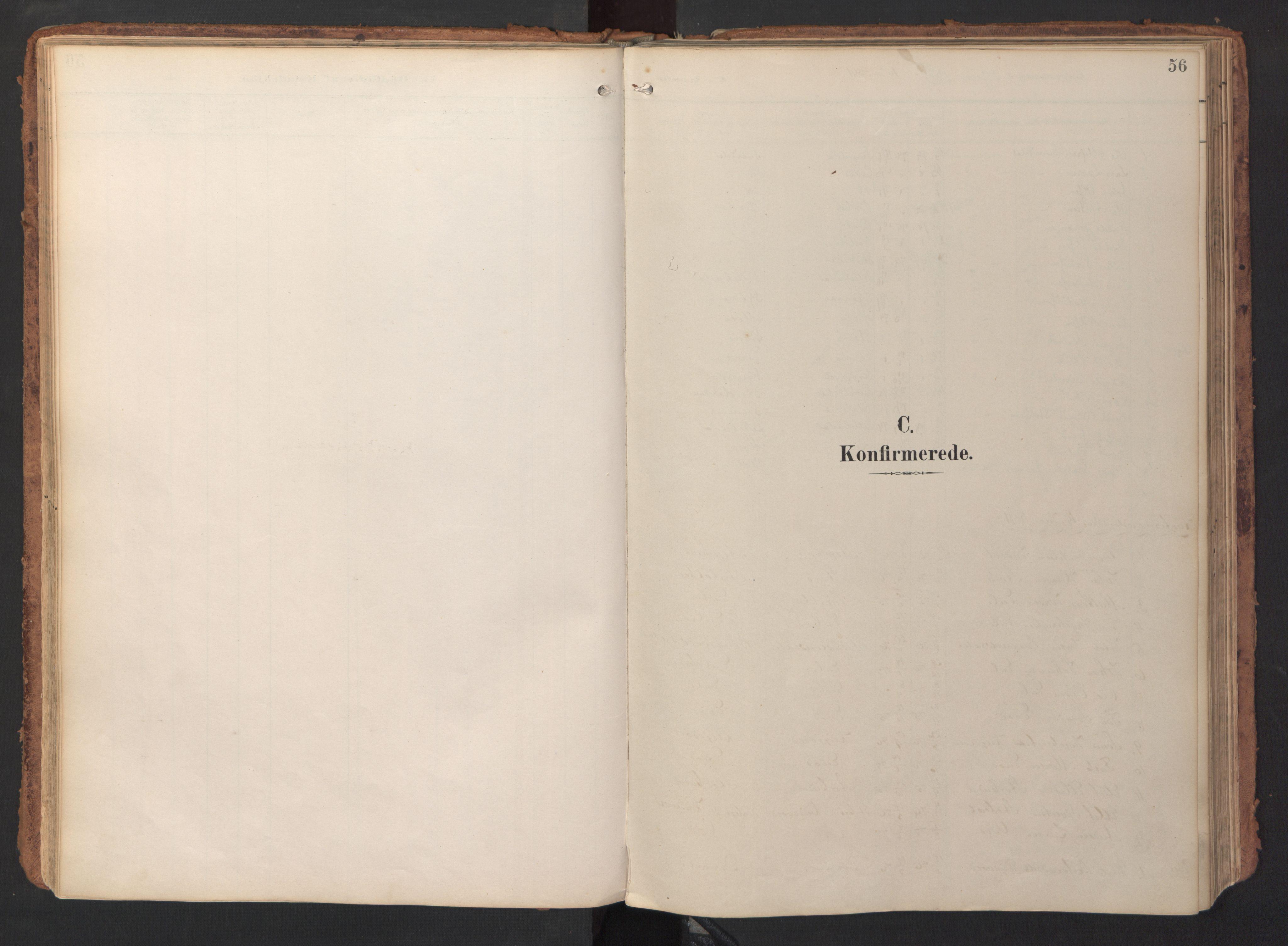 SAT, Ministerialprotokoller, klokkerbøker og fødselsregistre - Sør-Trøndelag, 690/L1050: Ministerialbok nr. 690A01, 1889-1929, s. 56