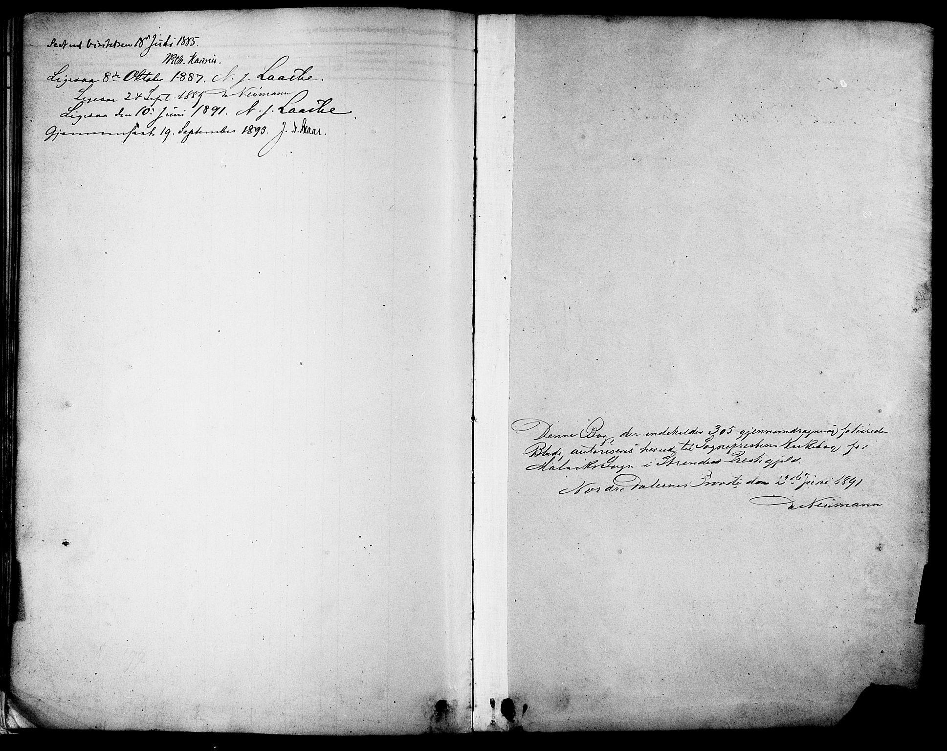SAT, Ministerialprotokoller, klokkerbøker og fødselsregistre - Sør-Trøndelag, 616/L0410: Ministerialbok nr. 616A07, 1878-1893