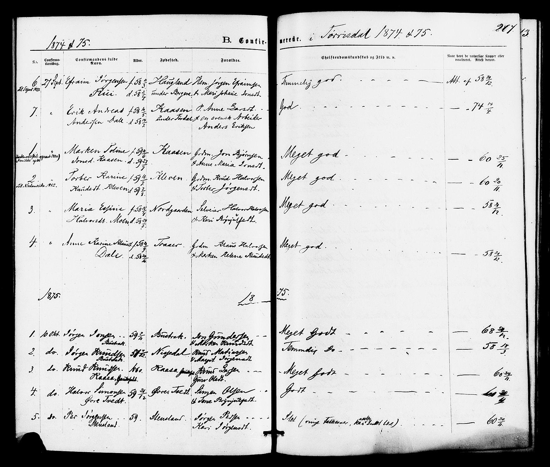 SAKO, Drangedal kirkebøker, F/Fa/L0009: Ministerialbok nr. 9 /2, 1872-1884, s. 207