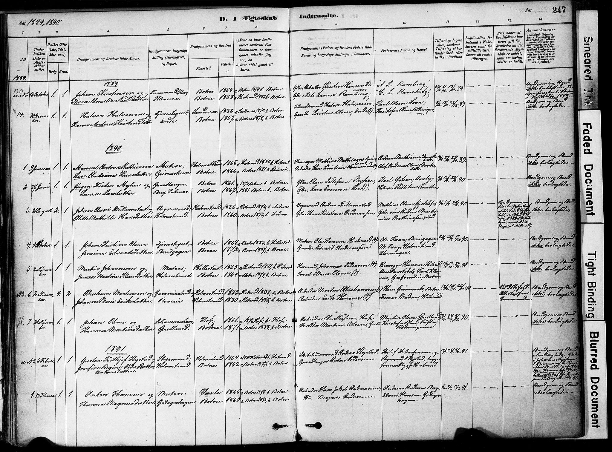SAKO, Botne kirkebøker, F/Fa/L0007: Ministerialbok nr. I 7, 1878-1910, s. 247