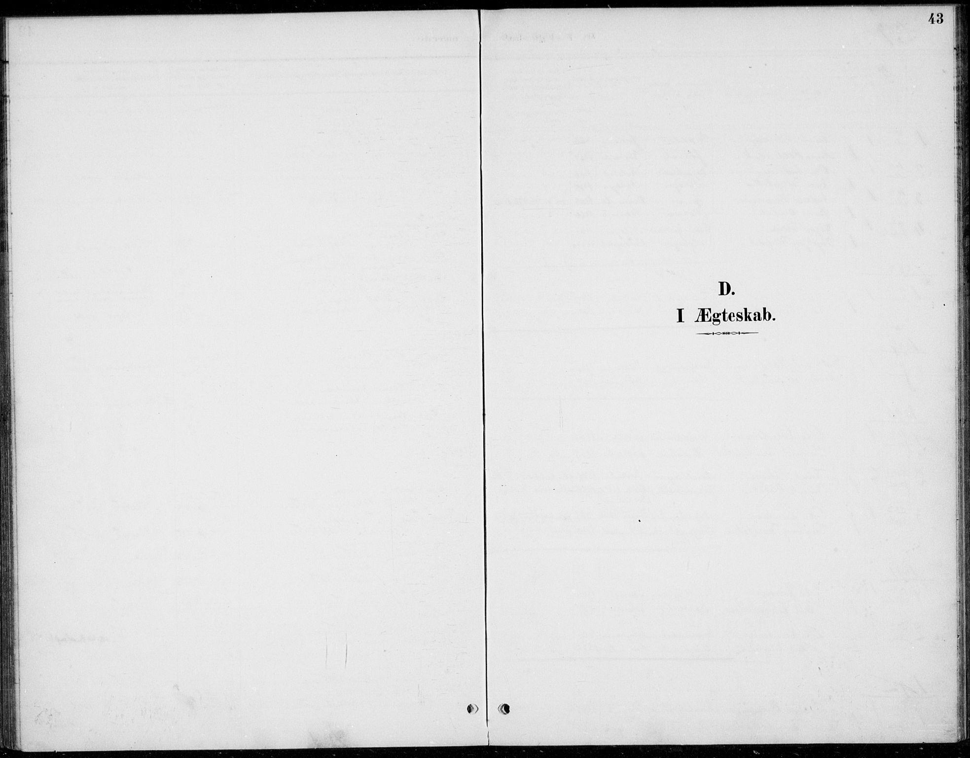 SAH, Øystre Slidre prestekontor, Ministerialbok nr. 5, 1887-1916, s. 43