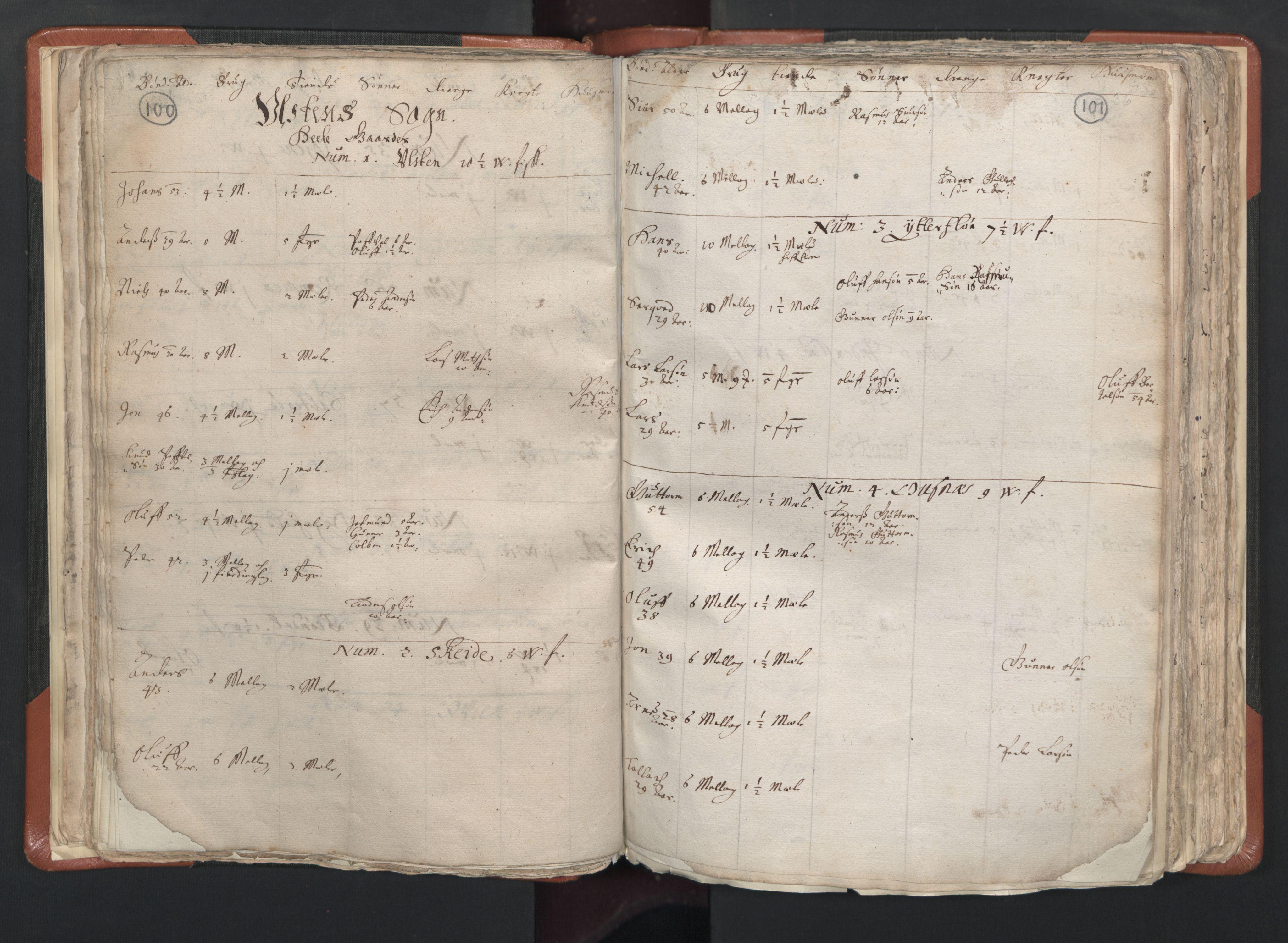 RA, Sogneprestenes manntall 1664-1666, nr. 26: Sunnmøre prosti, 1664-1666, s. 100-101