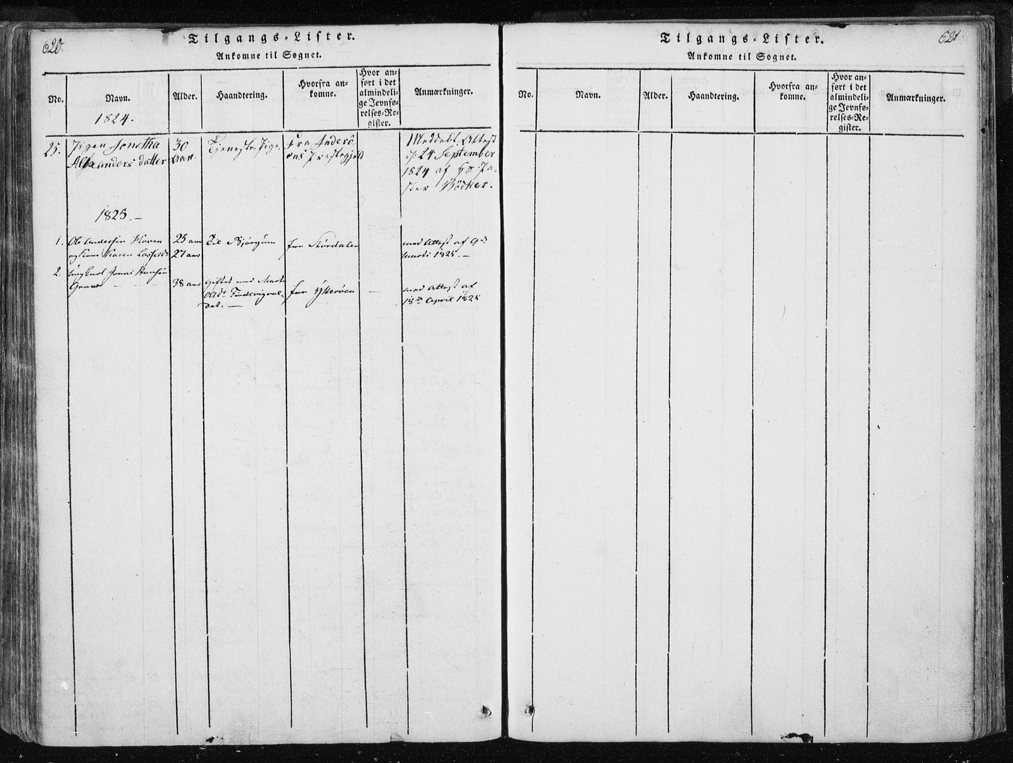 SAT, Ministerialprotokoller, klokkerbøker og fødselsregistre - Nord-Trøndelag, 717/L0148: Ministerialbok nr. 717A04 /3, 1816-1825, s. 620-621