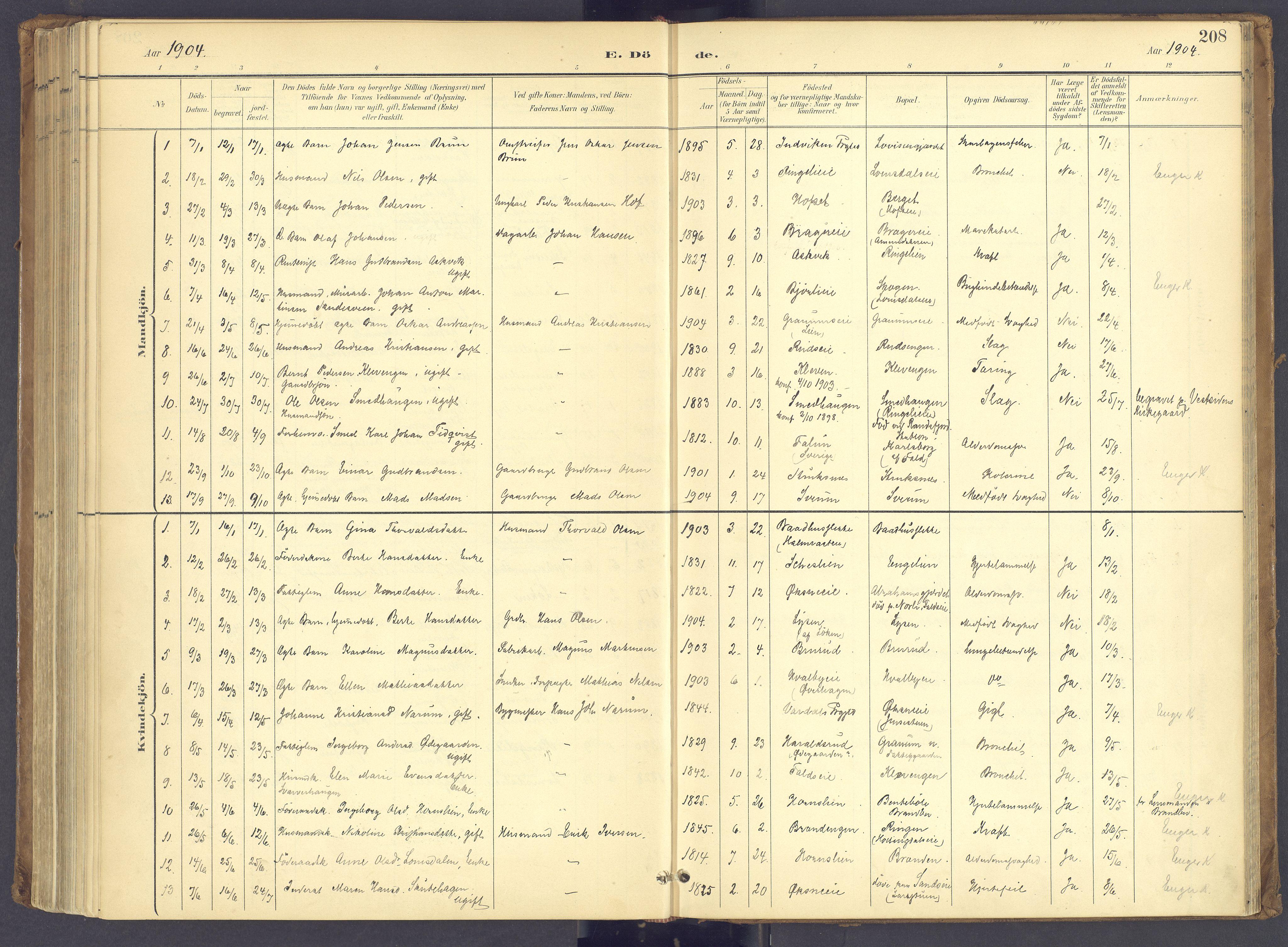 SAH, Søndre Land prestekontor, K/L0006: Ministerialbok nr. 6, 1895-1904, s. 208