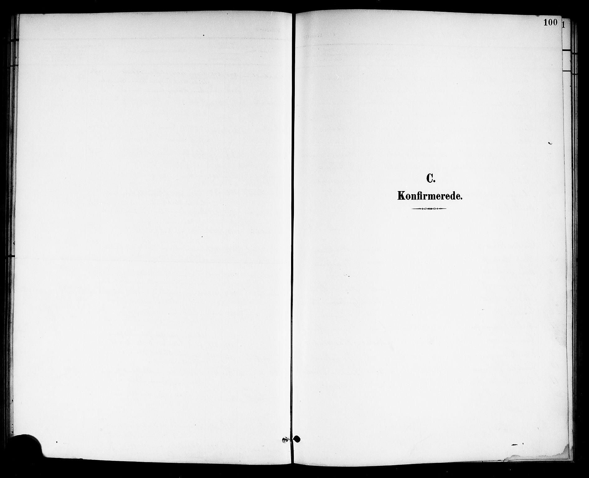 SAKO, Drangedal kirkebøker, G/Gb/L0002: Klokkerbok nr. II 2, 1895-1918, s. 100