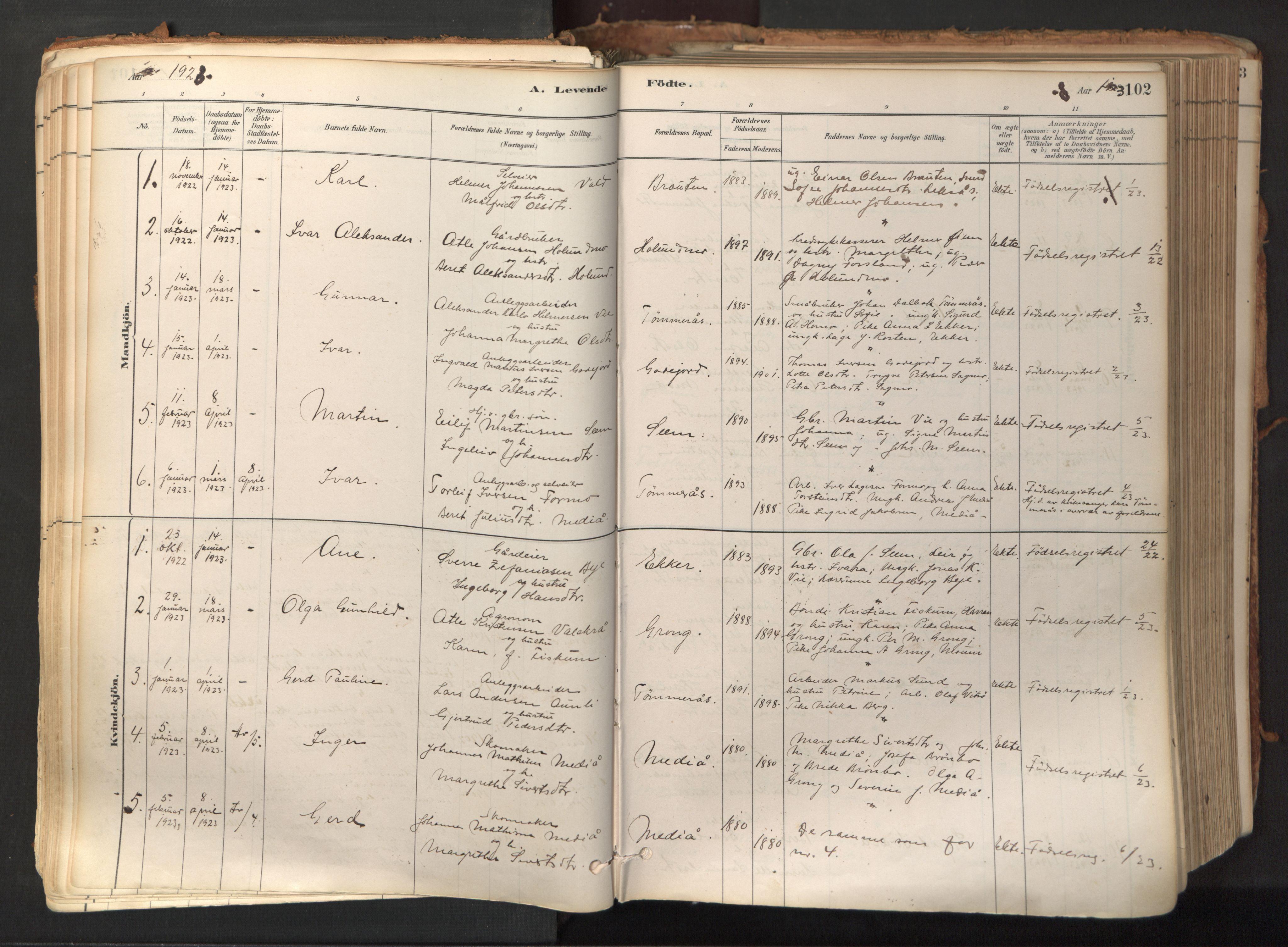 SAT, Ministerialprotokoller, klokkerbøker og fødselsregistre - Nord-Trøndelag, 758/L0519: Ministerialbok nr. 758A04, 1880-1926, s. 102