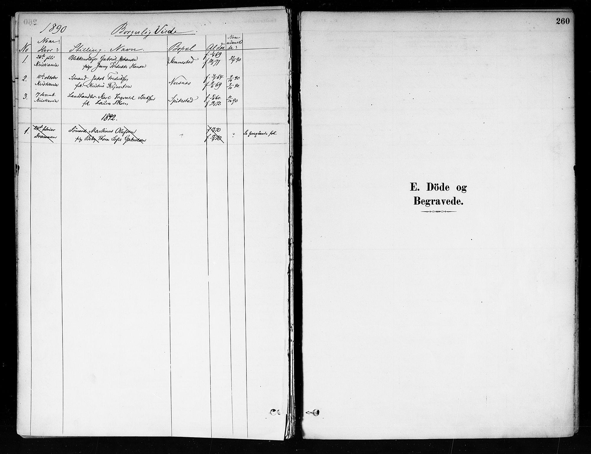 SAKO, Røyken kirkebøker, F/Fa/L0008: Ministerialbok nr. 8, 1880-1897, s. 260