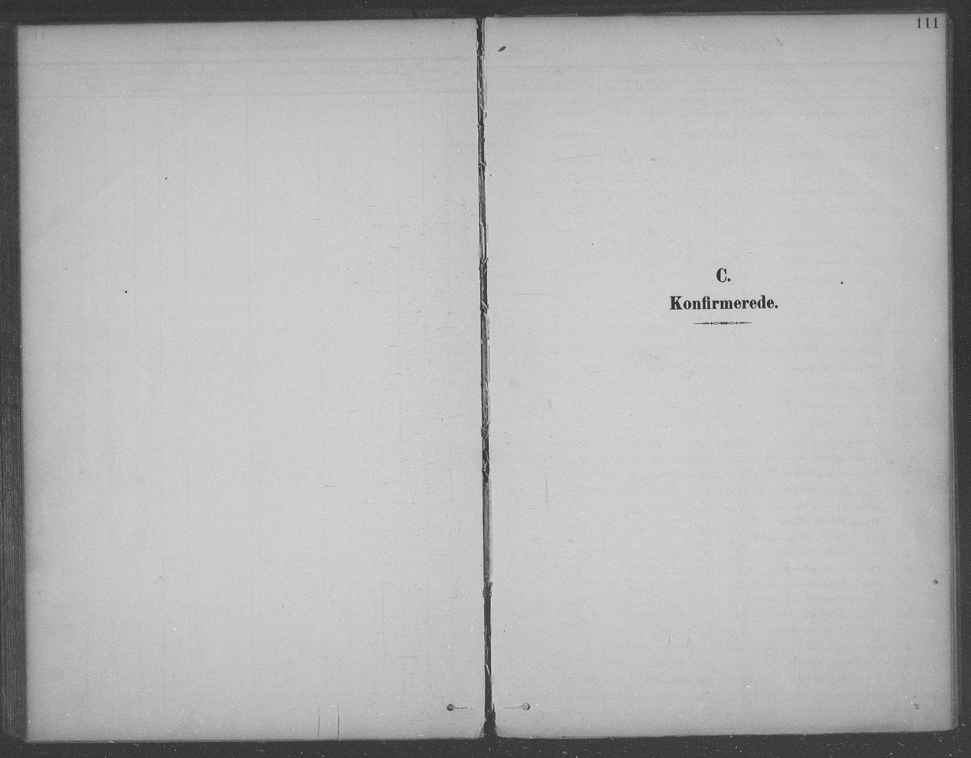 SAO, Aremark prestekontor Kirkebøker, F/Fb/L0005: Ministerialbok nr. II 5, 1895-1919, s. 111