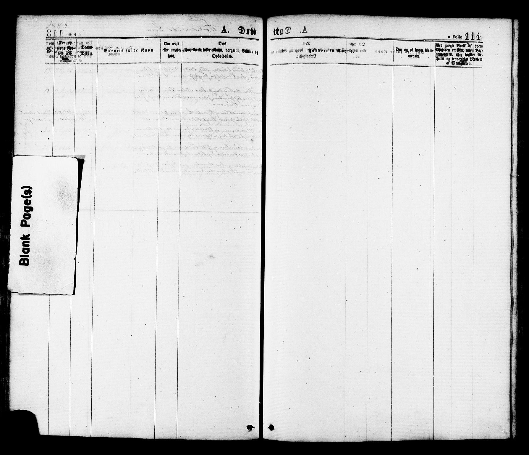 SAT, Ministerialprotokoller, klokkerbøker og fødselsregistre - Nord-Trøndelag, 780/L0642: Ministerialbok nr. 780A07 /2, 1878-1885, s. 114
