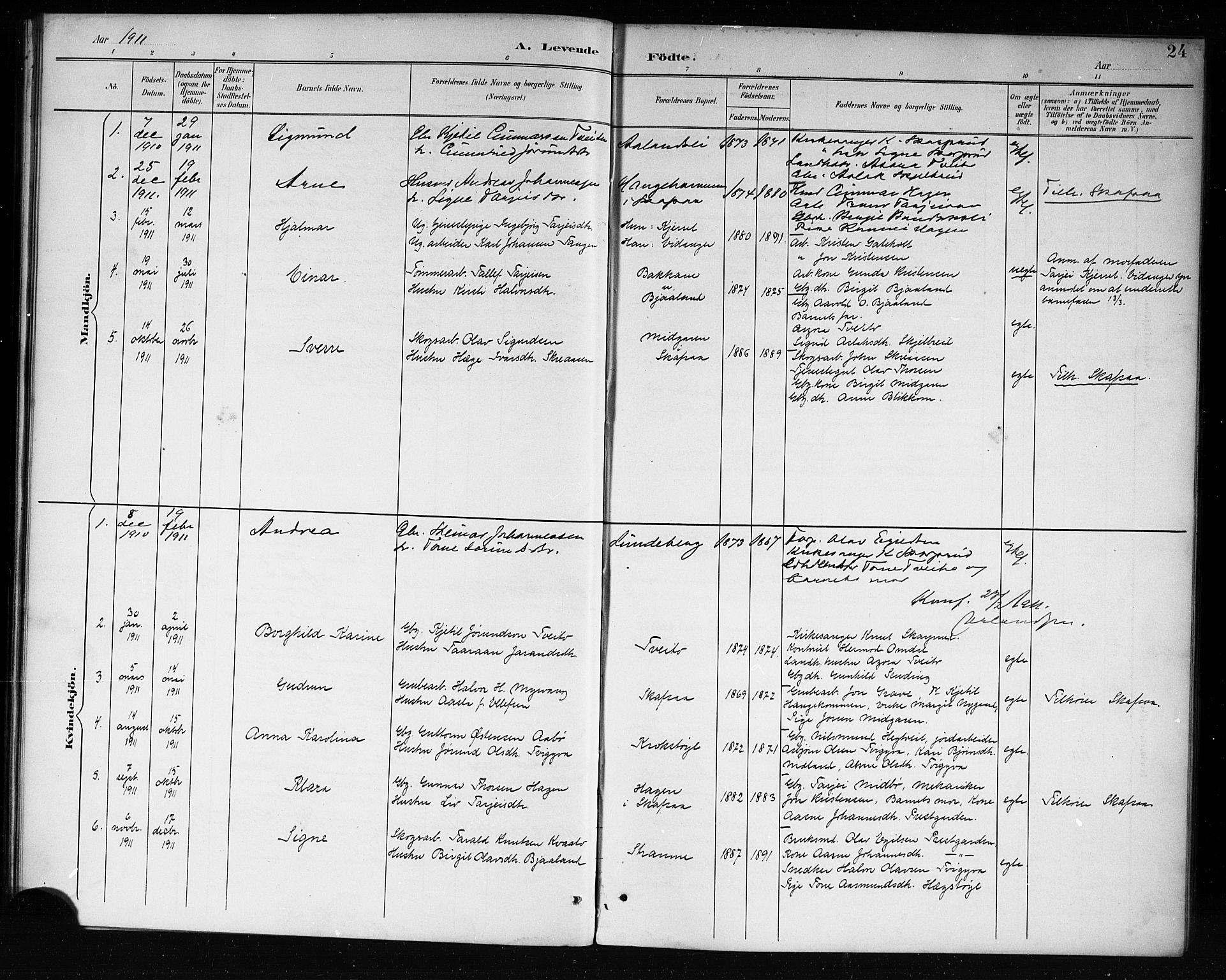 SAKO, Lårdal kirkebøker, G/Ga/L0003: Klokkerbok nr. I 3, 1891-1918, s. 24