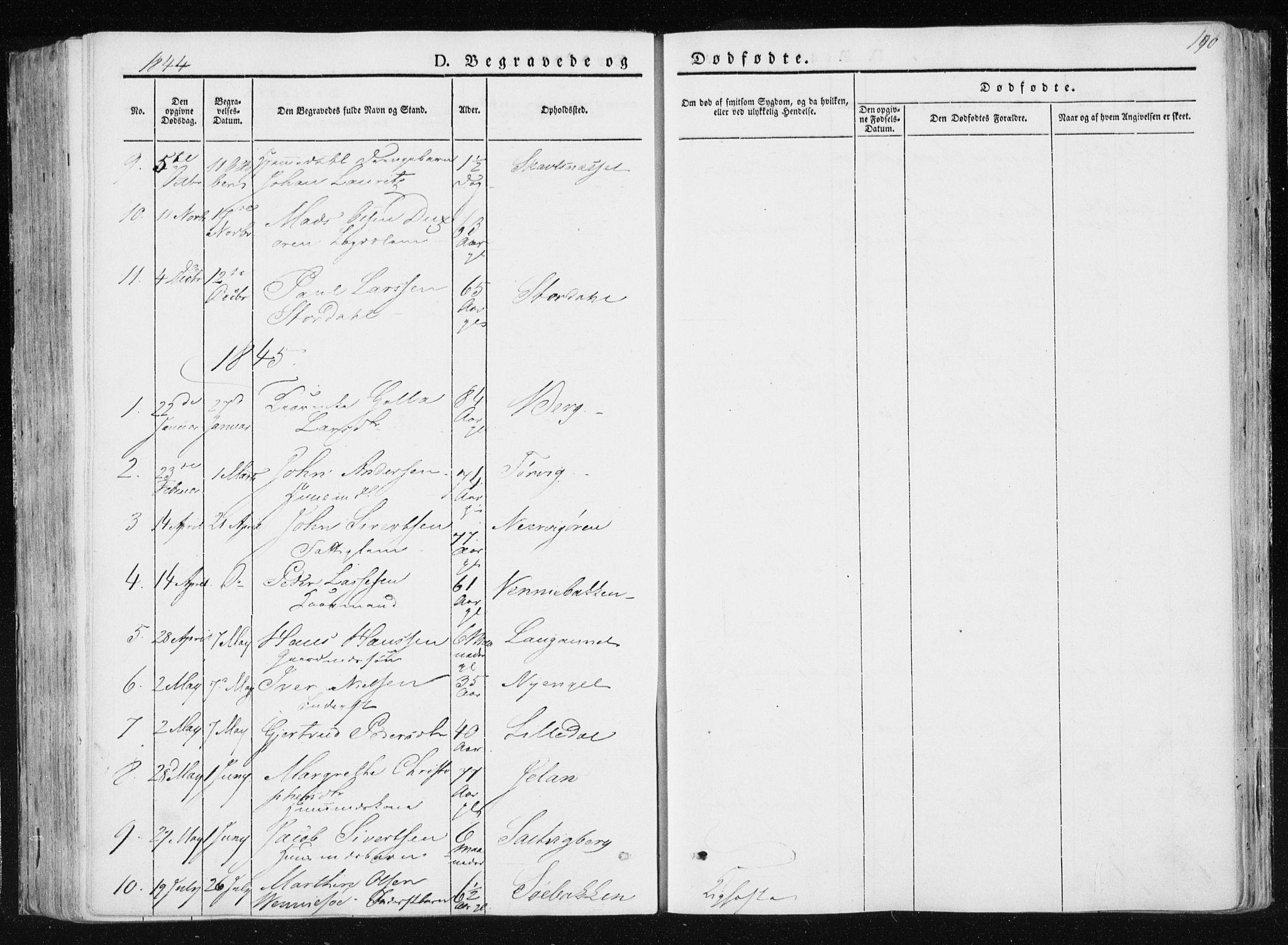 SAT, Ministerialprotokoller, klokkerbøker og fødselsregistre - Nord-Trøndelag, 733/L0323: Ministerialbok nr. 733A02, 1843-1870, s. 190