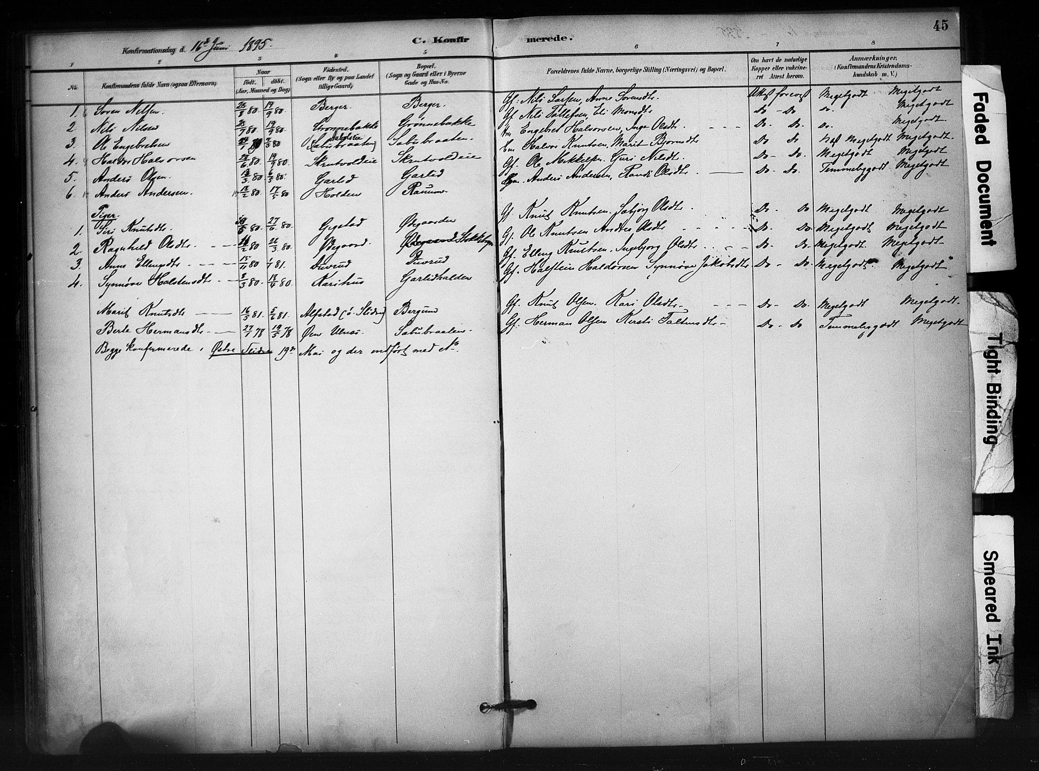 SAH, Nord-Aurdal prestekontor, Ministerialbok nr. 12, 1883-1895, s. 45