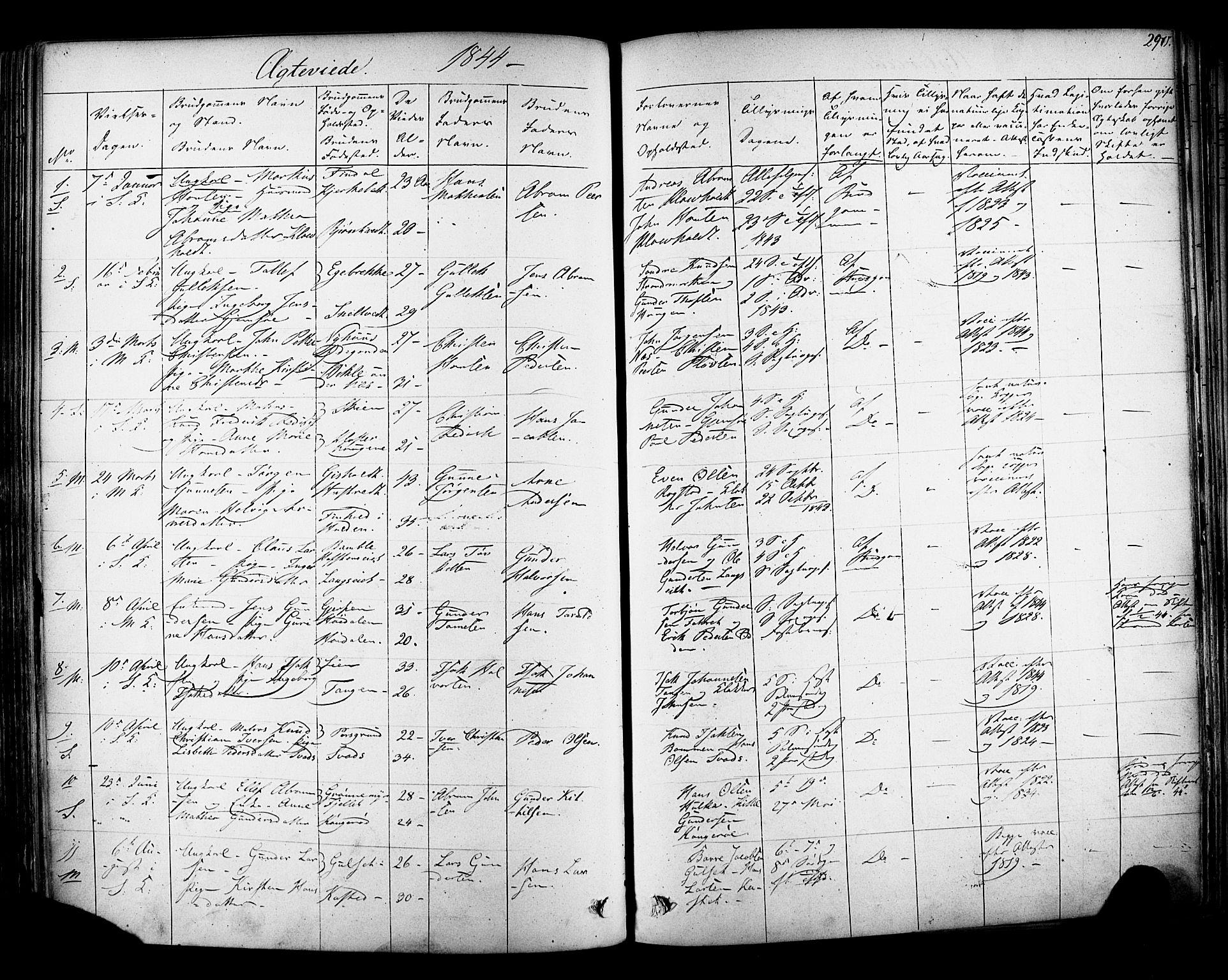 SAKO, Solum kirkebøker, F/Fa/L0006: Ministerialbok nr. I 6, 1844-1855, s. 290